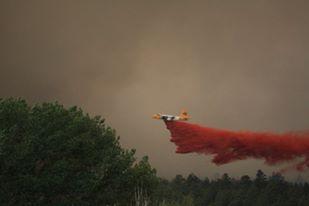 Slurry bomber drops fire retardant on the trees.