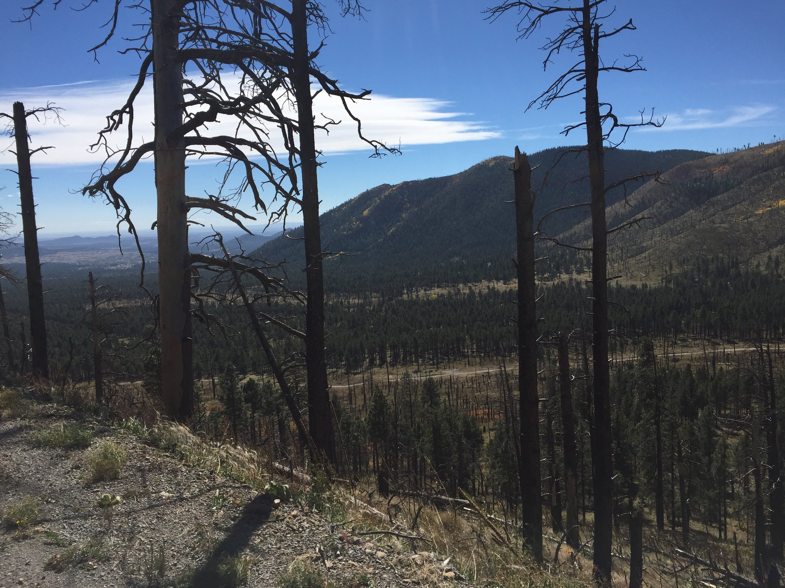 From the burned out mountain looking south.