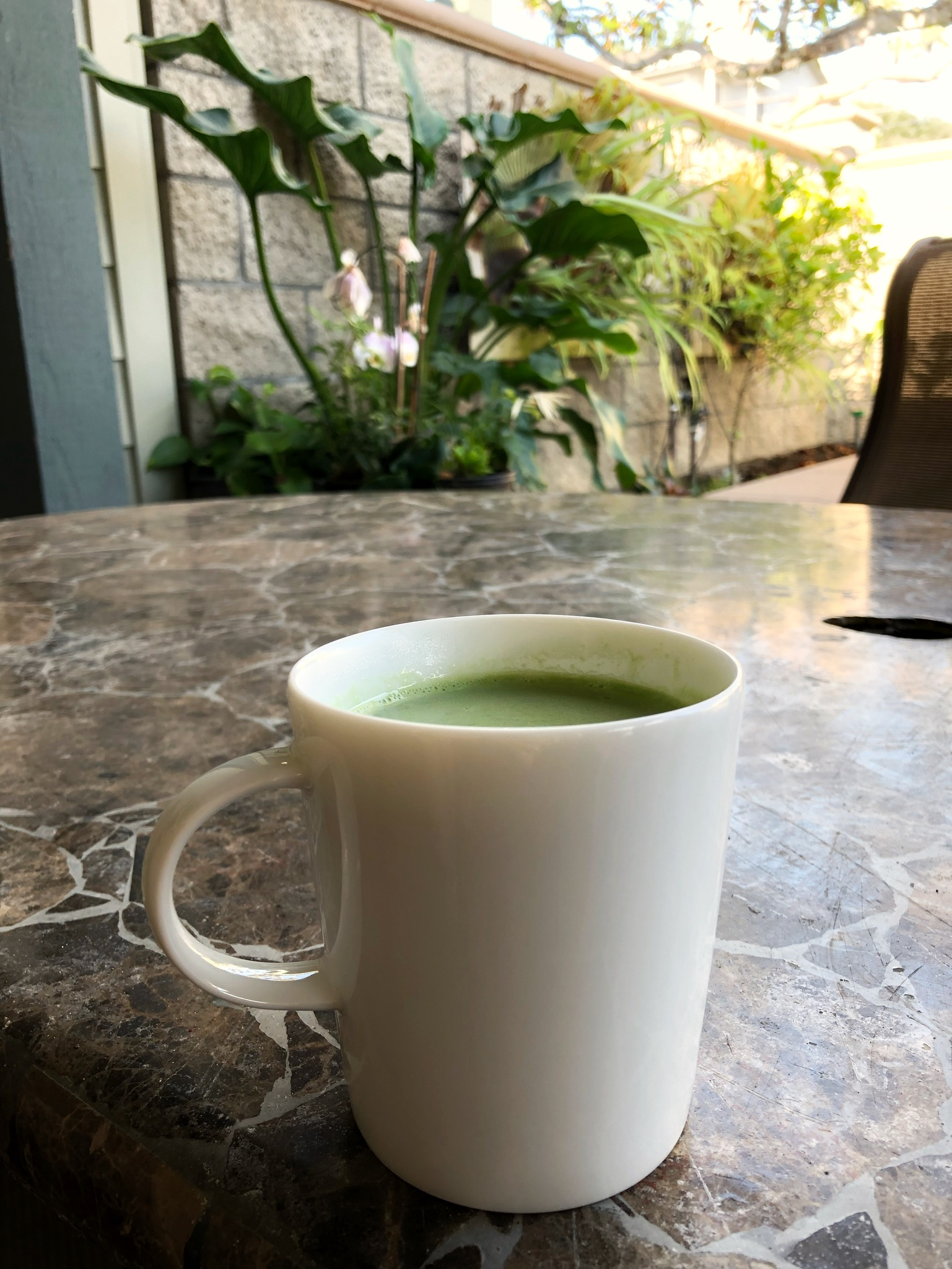 Whole30 Compliant Matcha Latte | Whole Daily Life