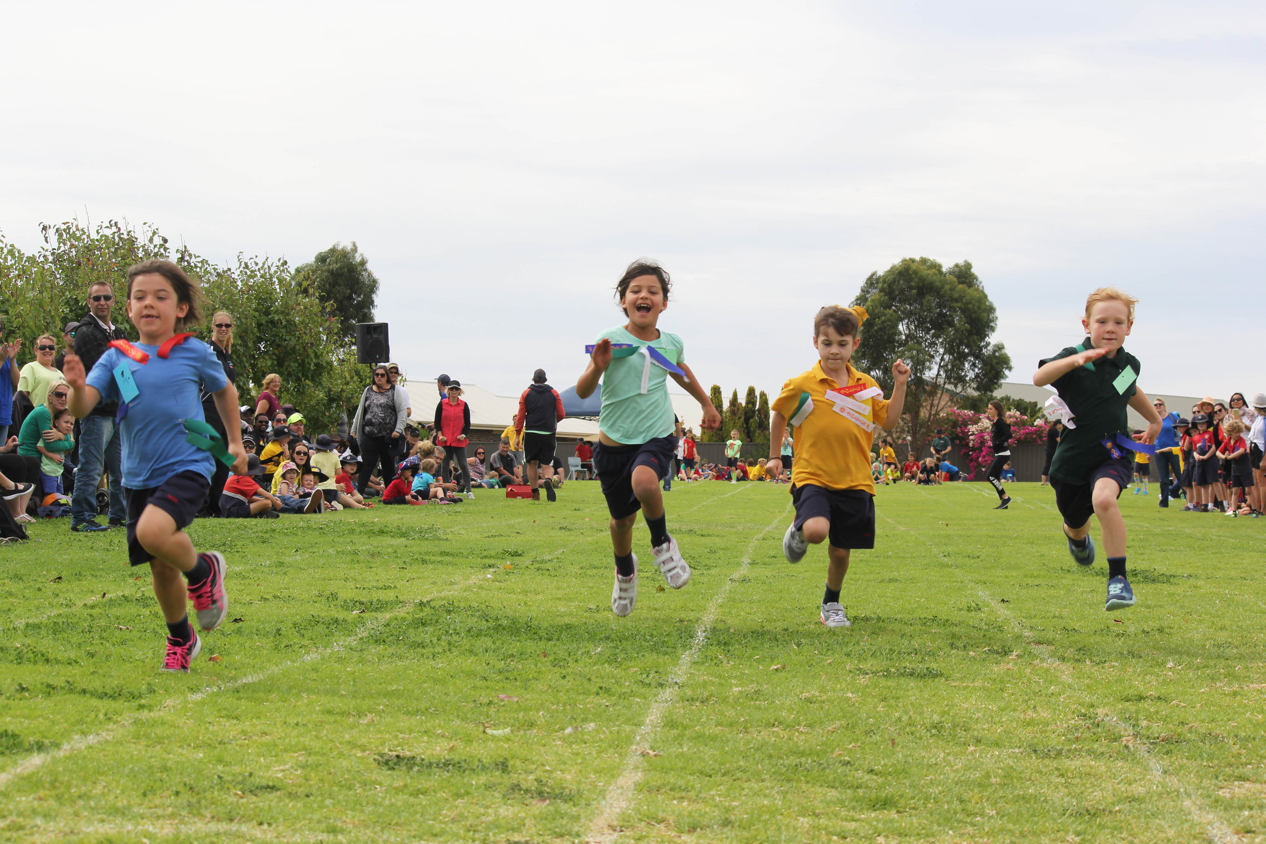 Primary Sports Day 2016 8.JPG