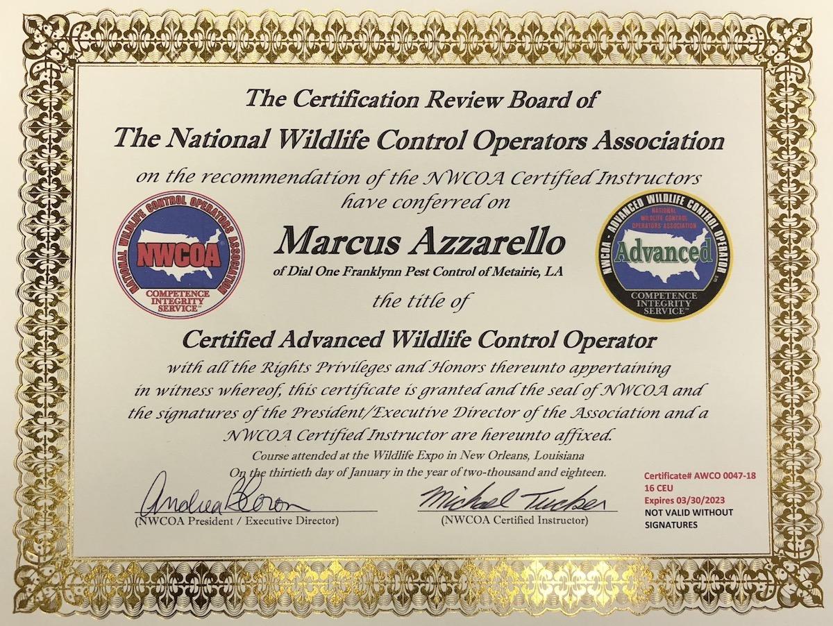 wildlife certificate.JPG