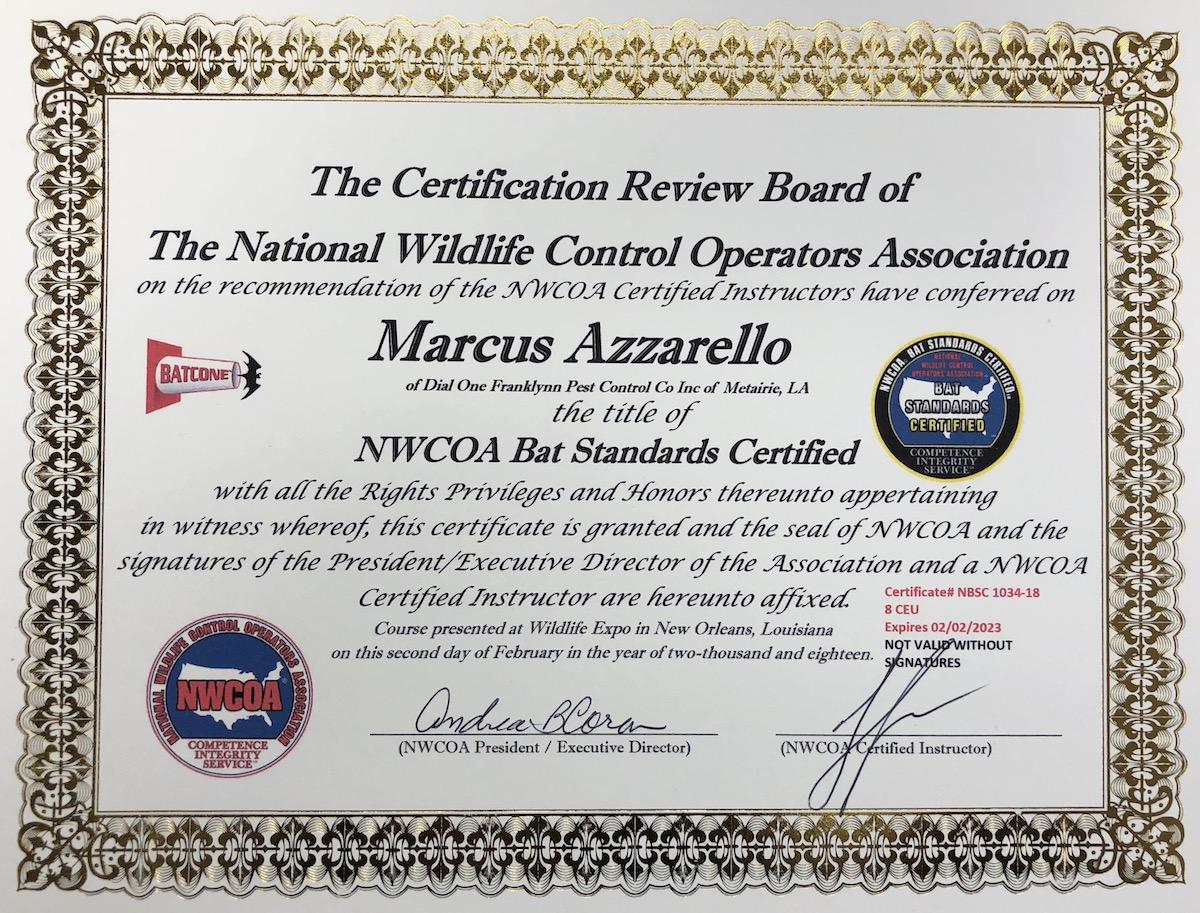 Bat Certificate.JPG