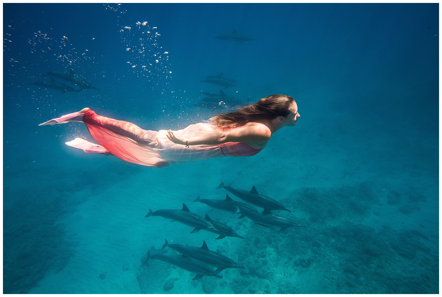 Underwater Portrait with Dolphins