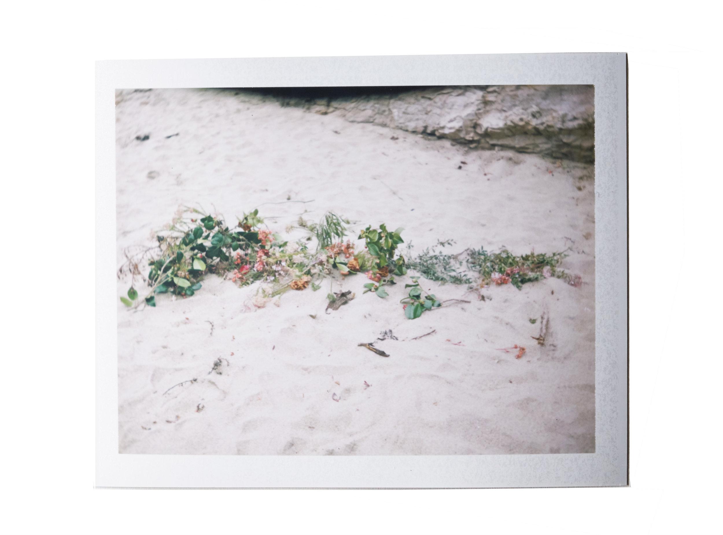 Polaroid_36.jpg