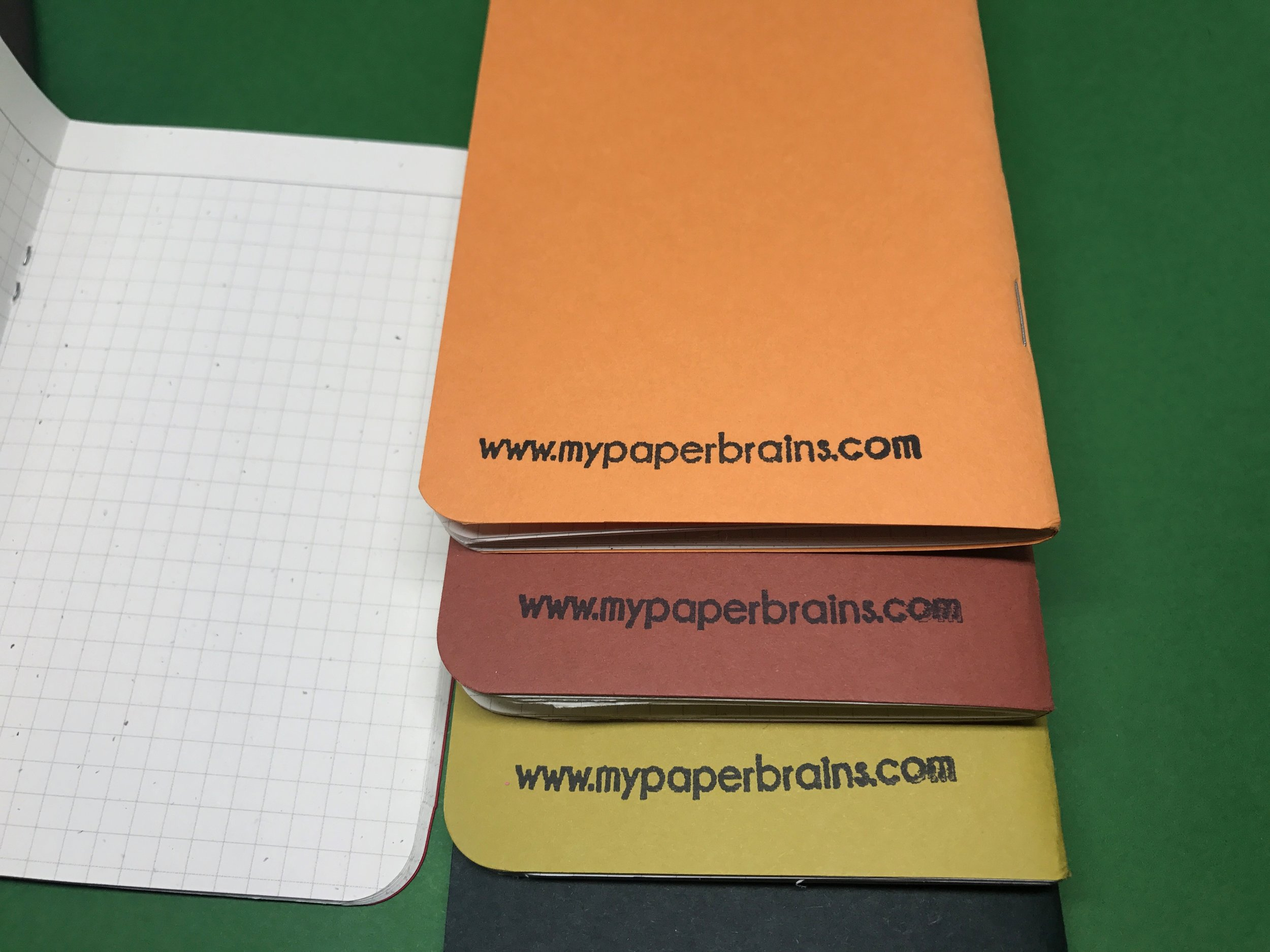 my-paper-brains-pocket-notebooks-7.jpg
