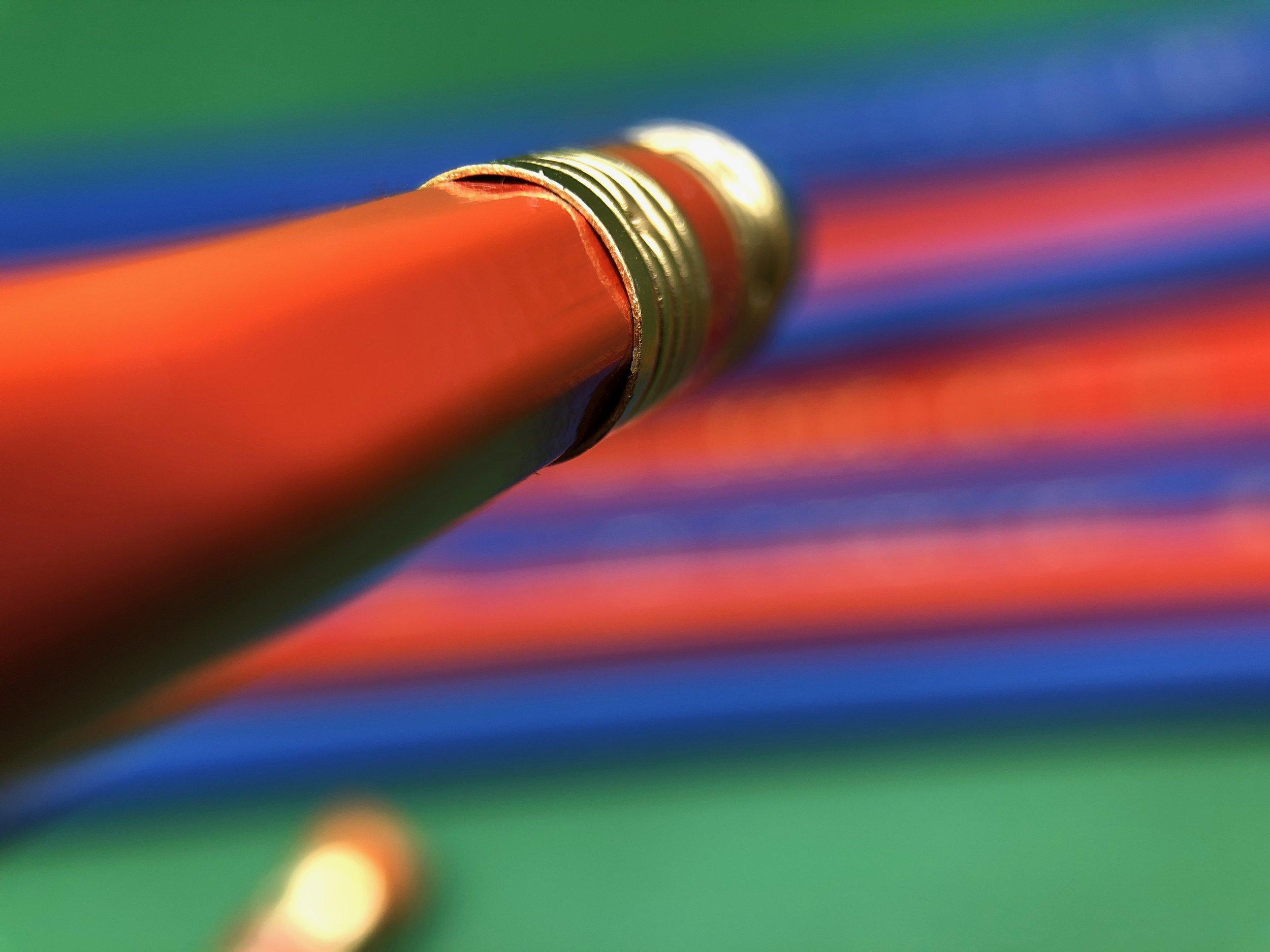 palomino-golden-bear-pencil-10.jpg