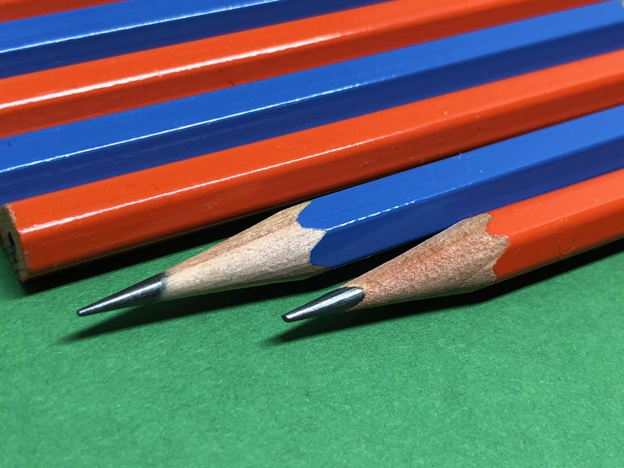 palomino-golden-bear-pencil-3.jpg