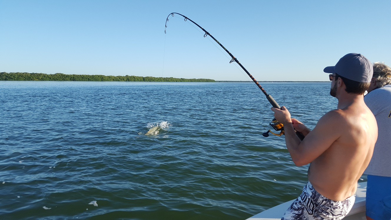 Tarpon Fishing Naples, FL