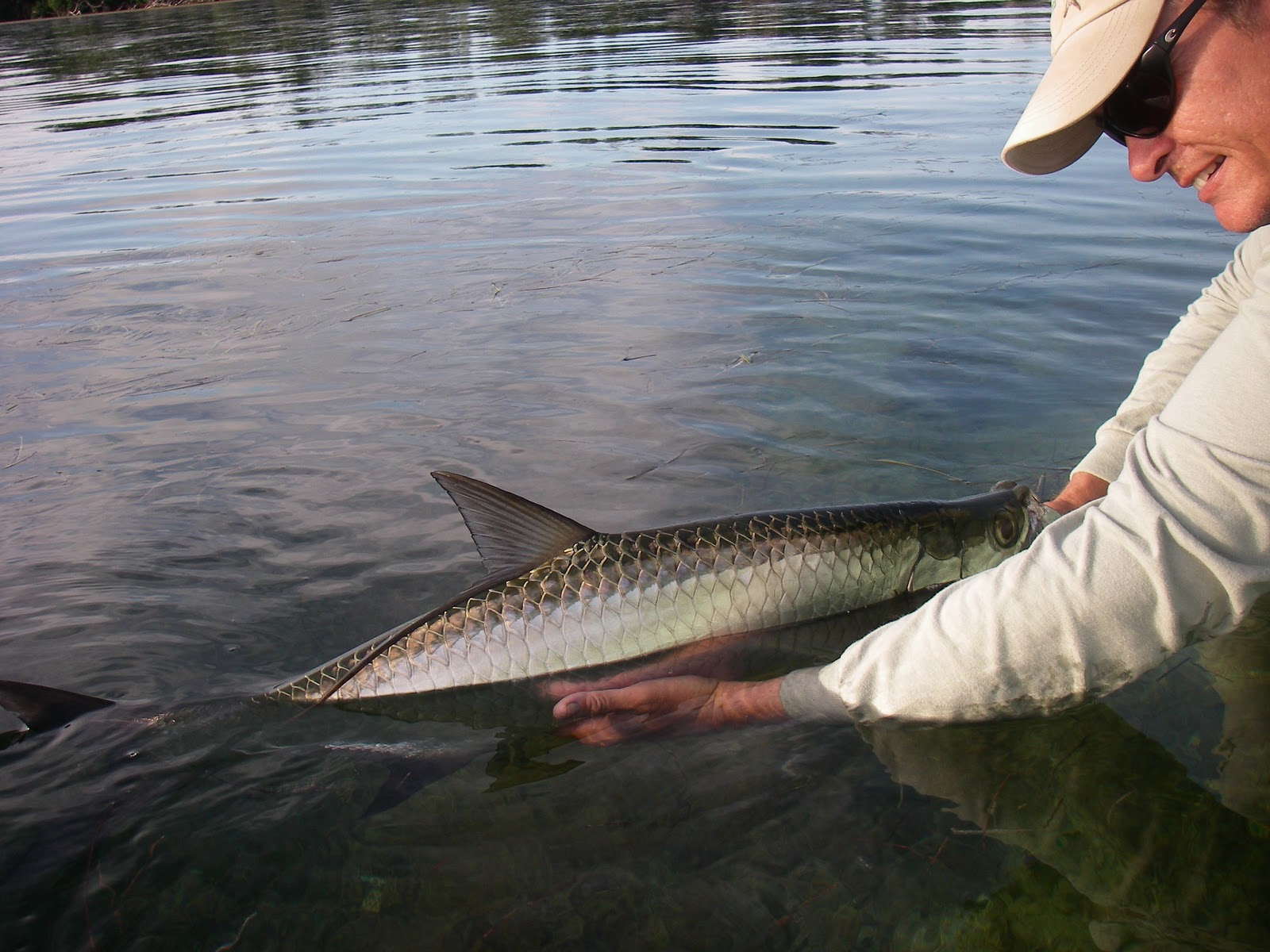Fly Fishing For Tarpon In the Everglades