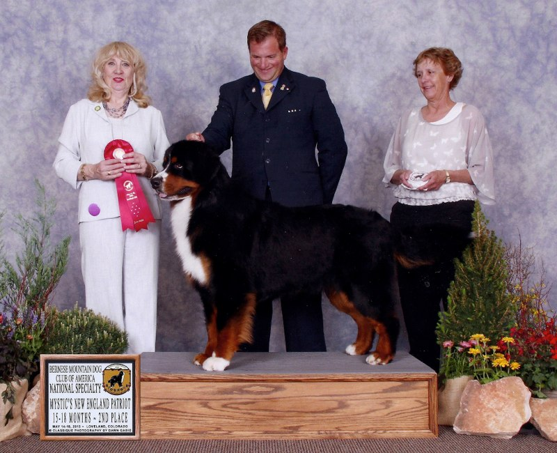 Wesley -National Specialty Regular Classes5-18 mos- 2nd place!  Thank you Helen Davenport Willis and Kevin Bednar!