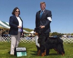 Bucks County - Winners Dog
