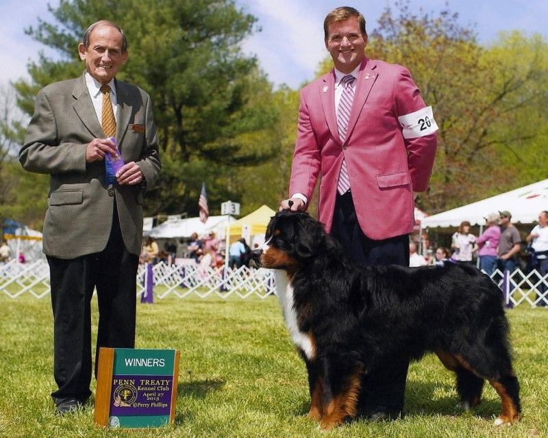 Penn Treaty Winners Dog