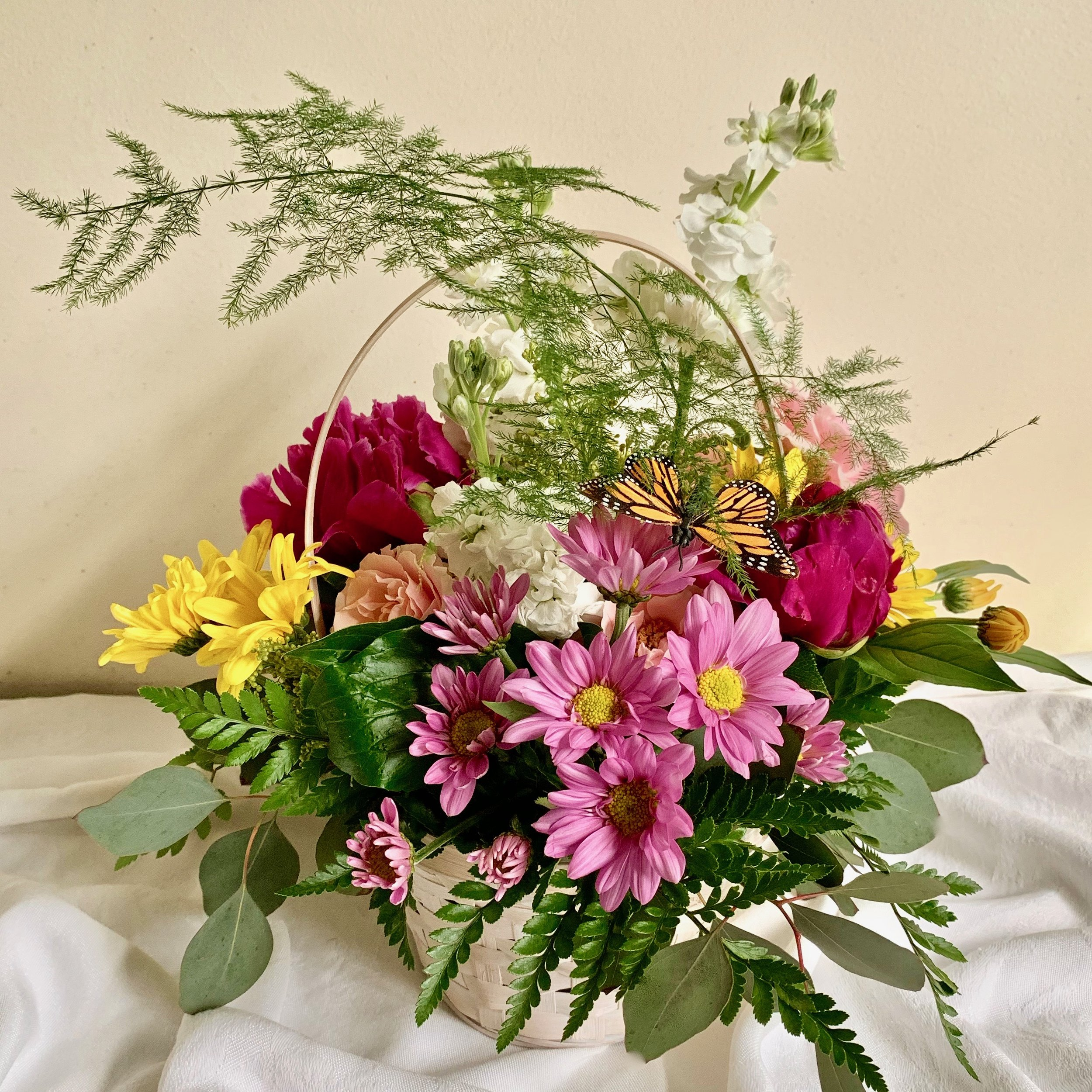 BUTTERFLY BASKET   Colorful daisies, carnations and roses fill a 7 inch basket, $45.