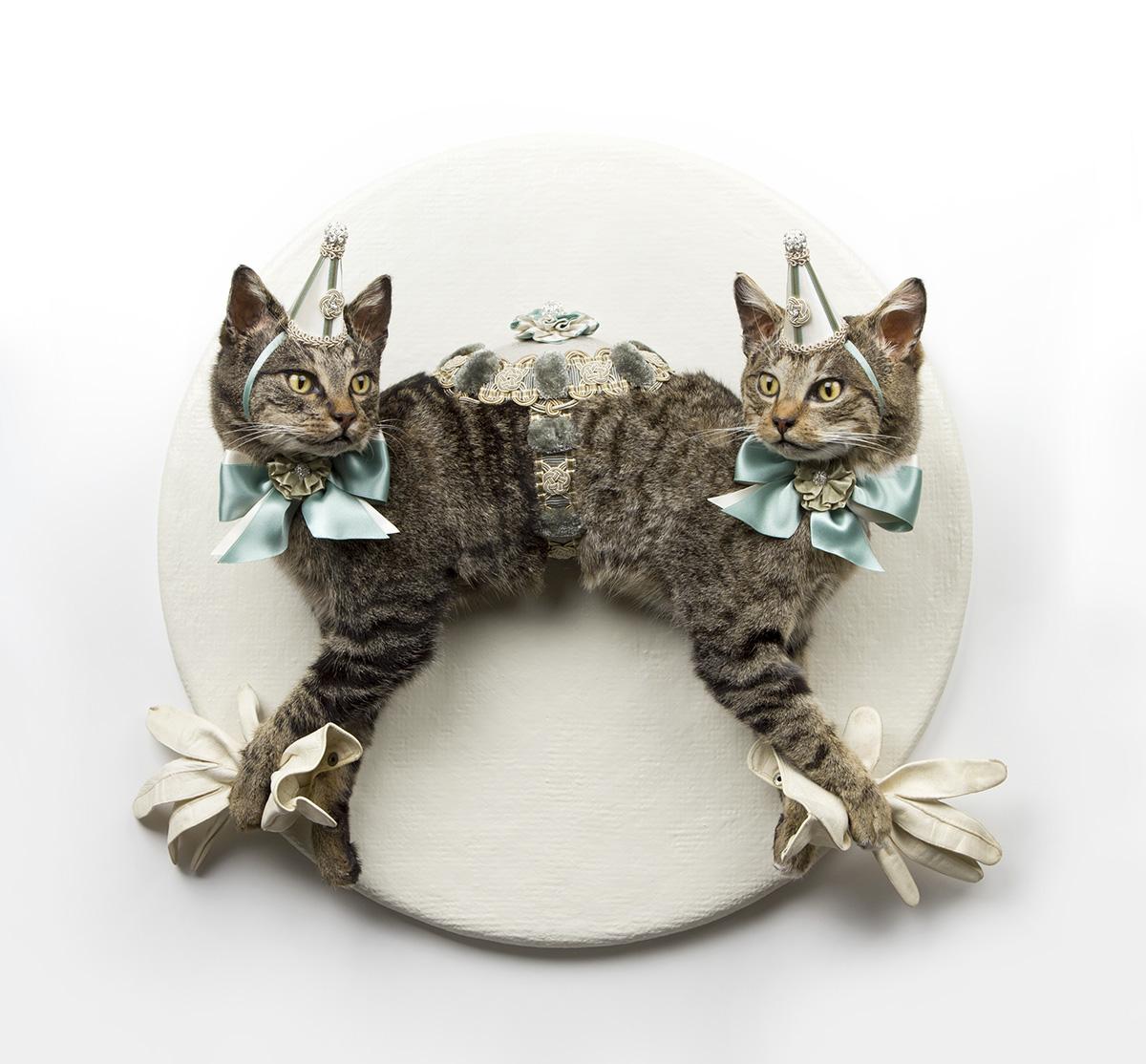 Les-Deux-Garcons-Cats_02.jpg