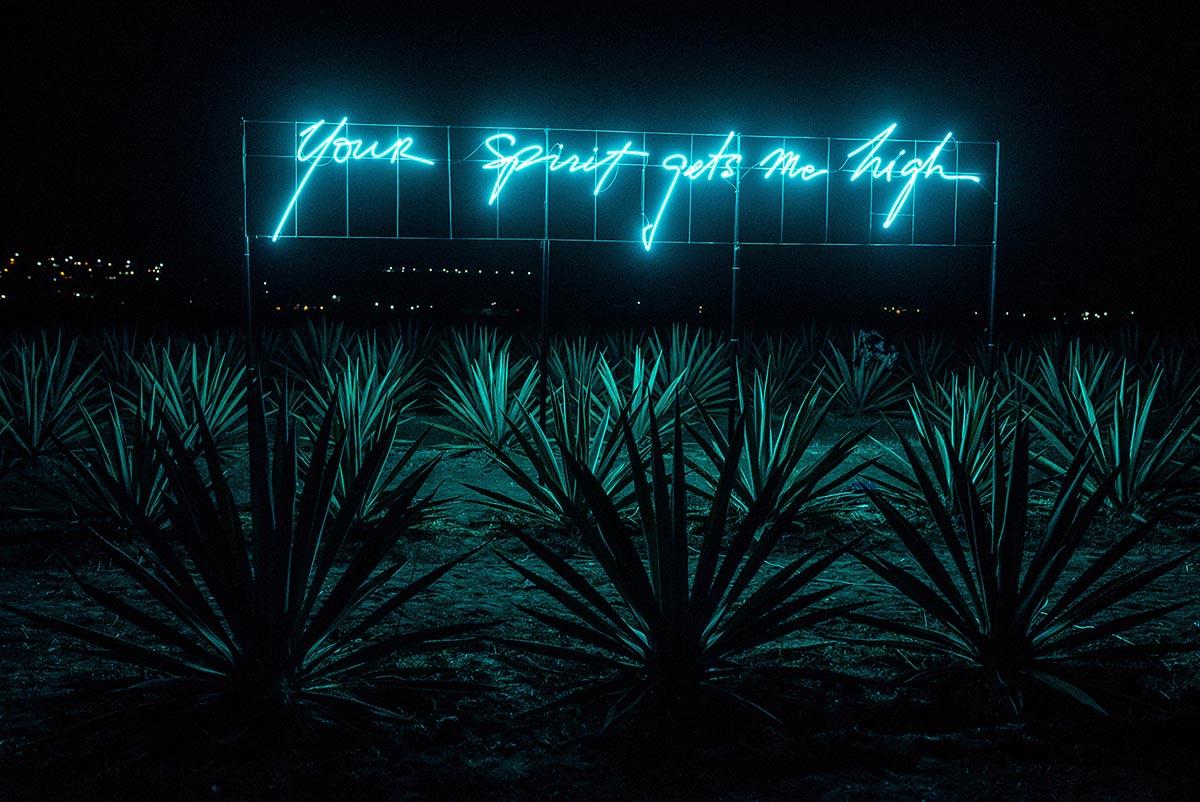 2016_your-spirit-gets-me-high_1.jpg