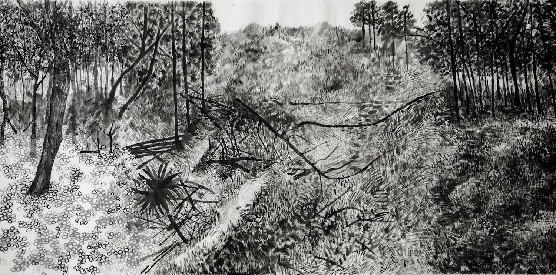 "From the series ""Paisajes en transformación"", - 3/6 Suiboku on Japanese paper, 69cm. X 10m., 2013."