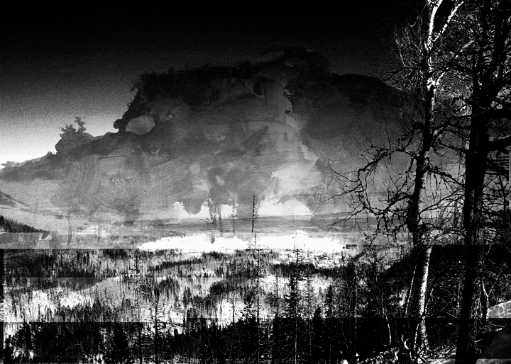 Landscape_II_digital_collage_2015_MWapiennik.jpg