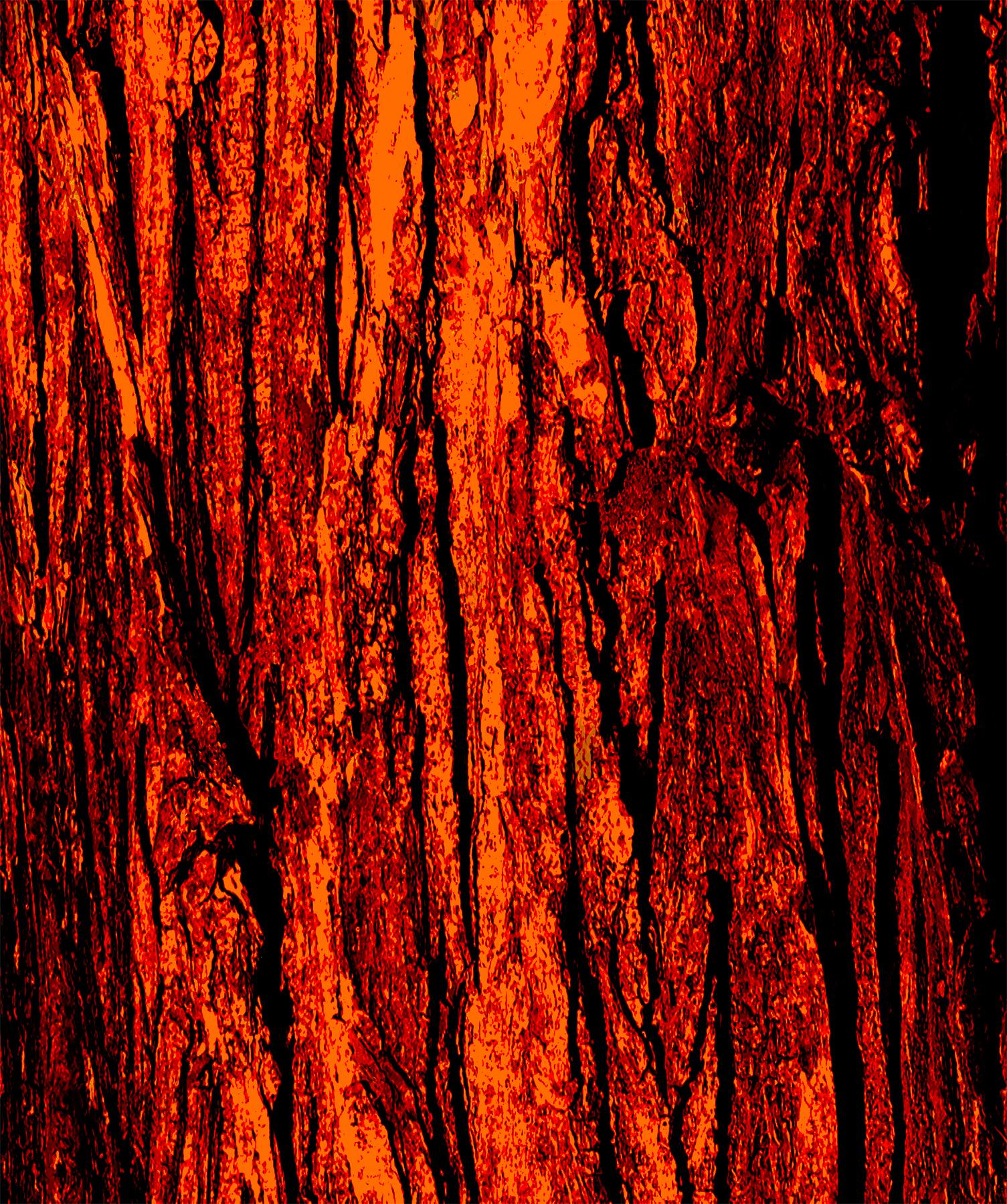 Tree Bark Red .jpg