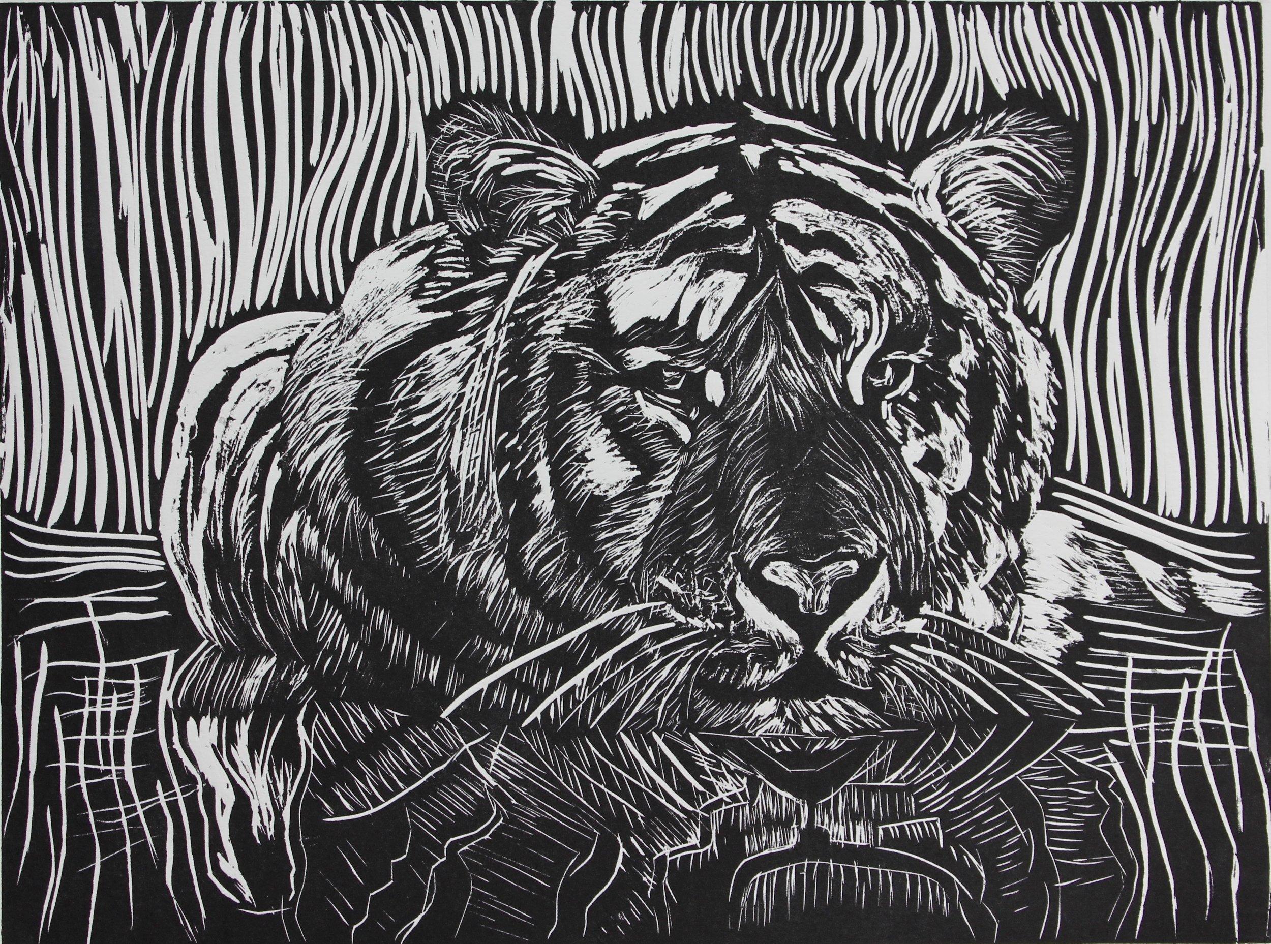 Tiger Too!