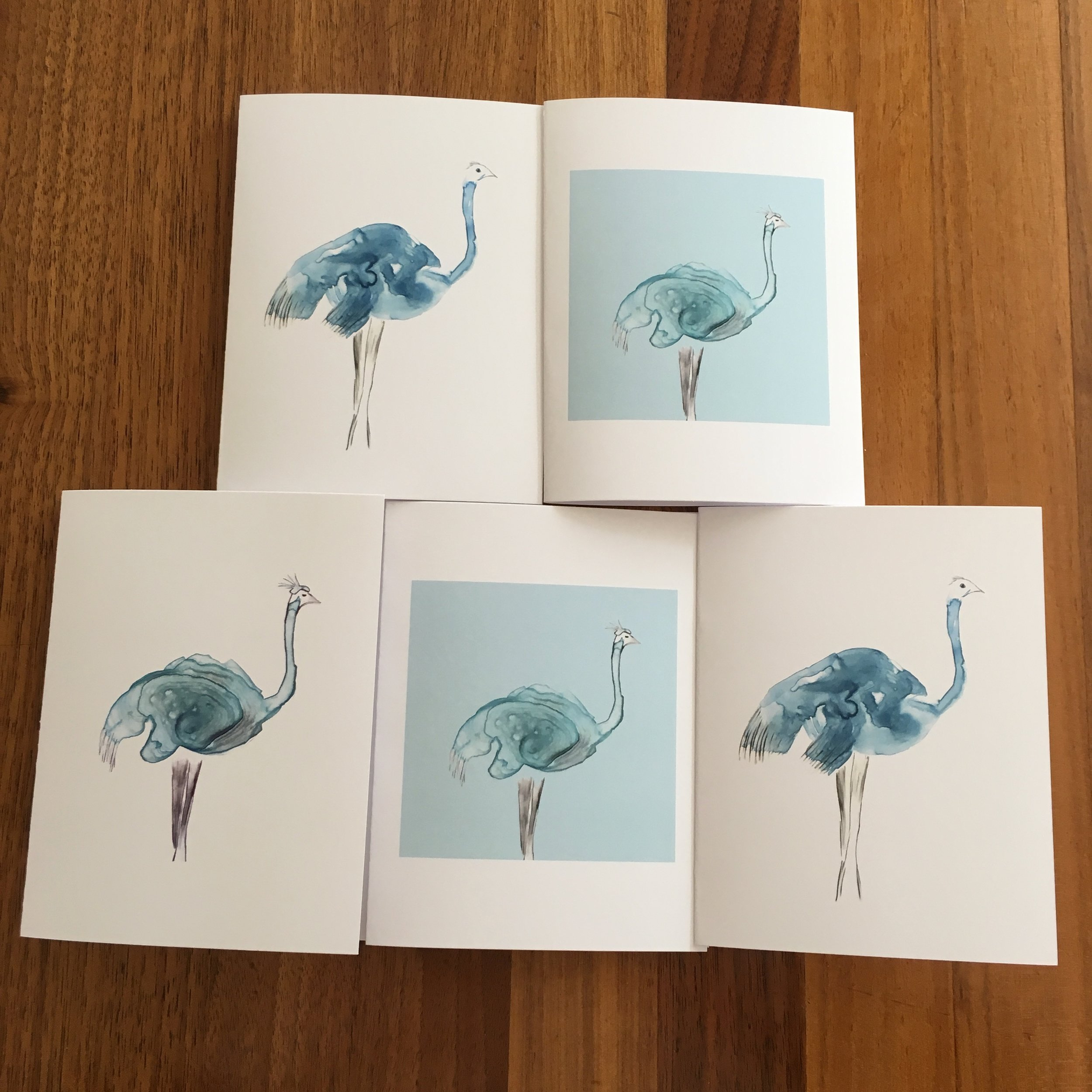 Mixed set of Five Cards: Ostriches