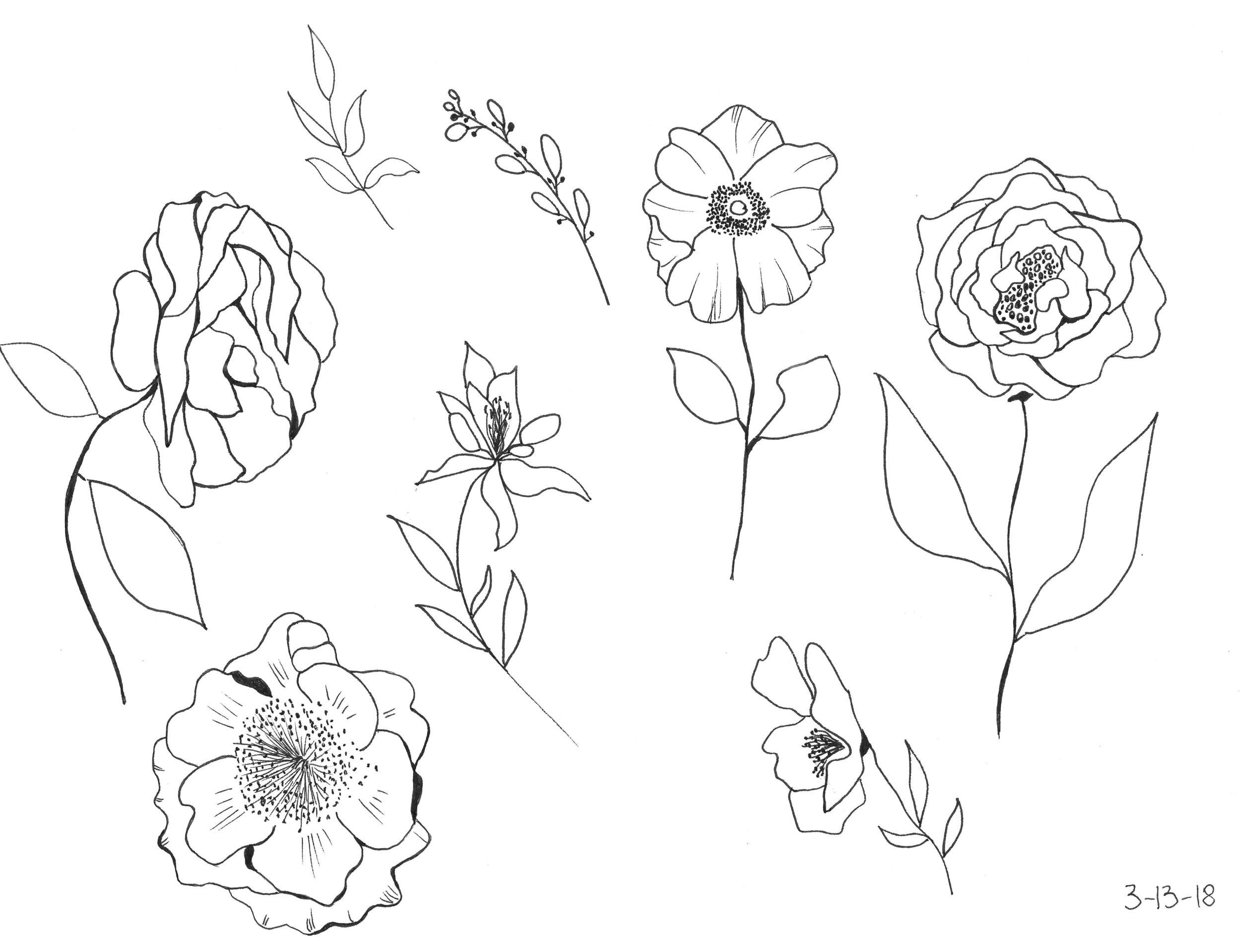 Day 72 Flower sketches.jpeg