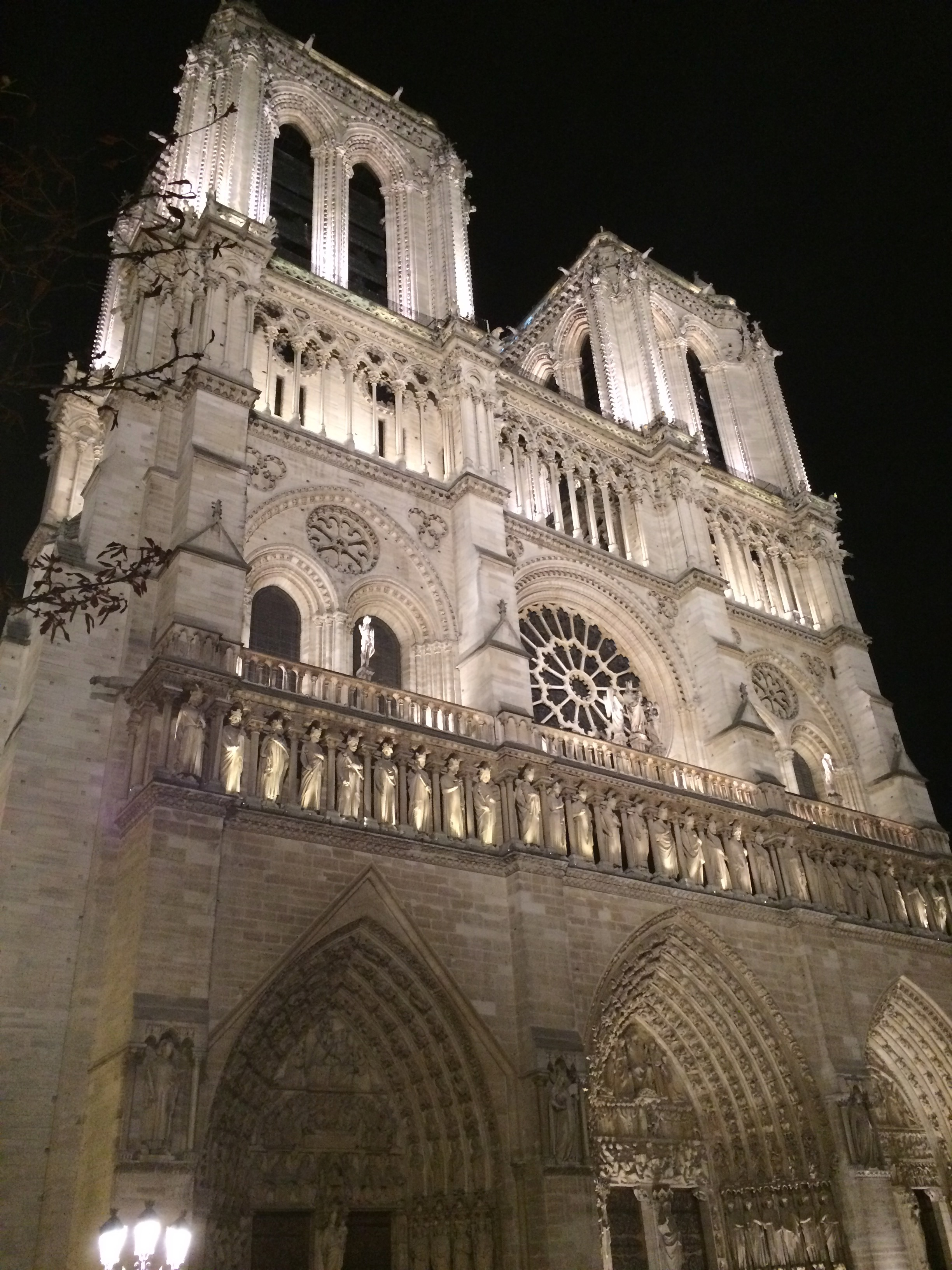 Notre Dame at night.jpg