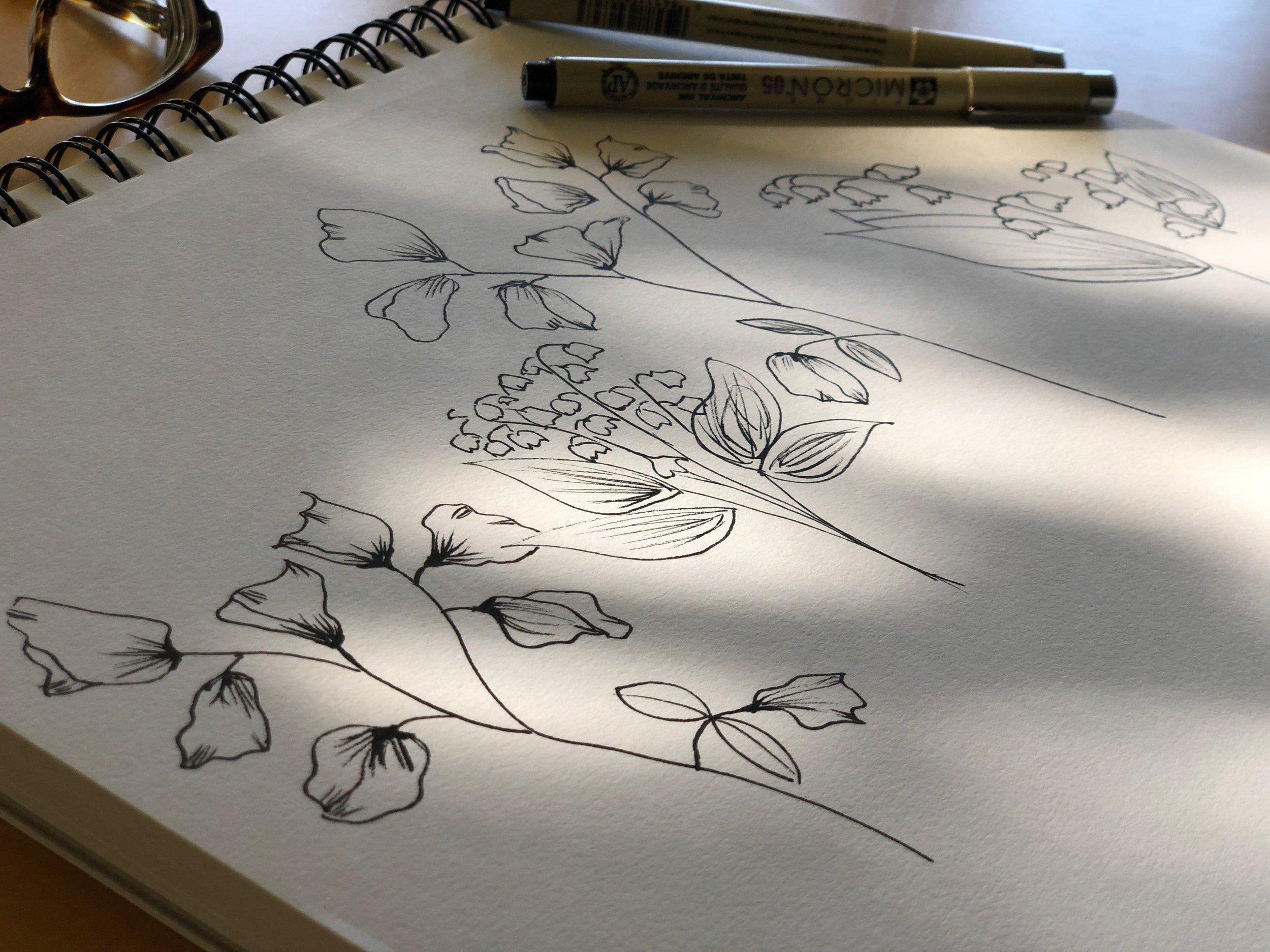 sketches-in-the-sun_Anne-LaFollette.jpg