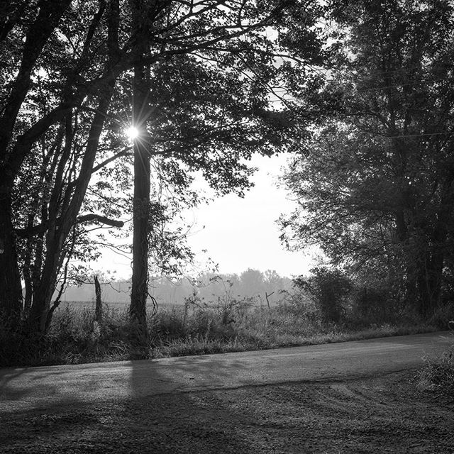 Another beautiful Middleburg sunrise! #middleburgmoments #middleburgmoment #middleburg #middleburgva #middleburginbw #blackandwhitephoto #bwphoto