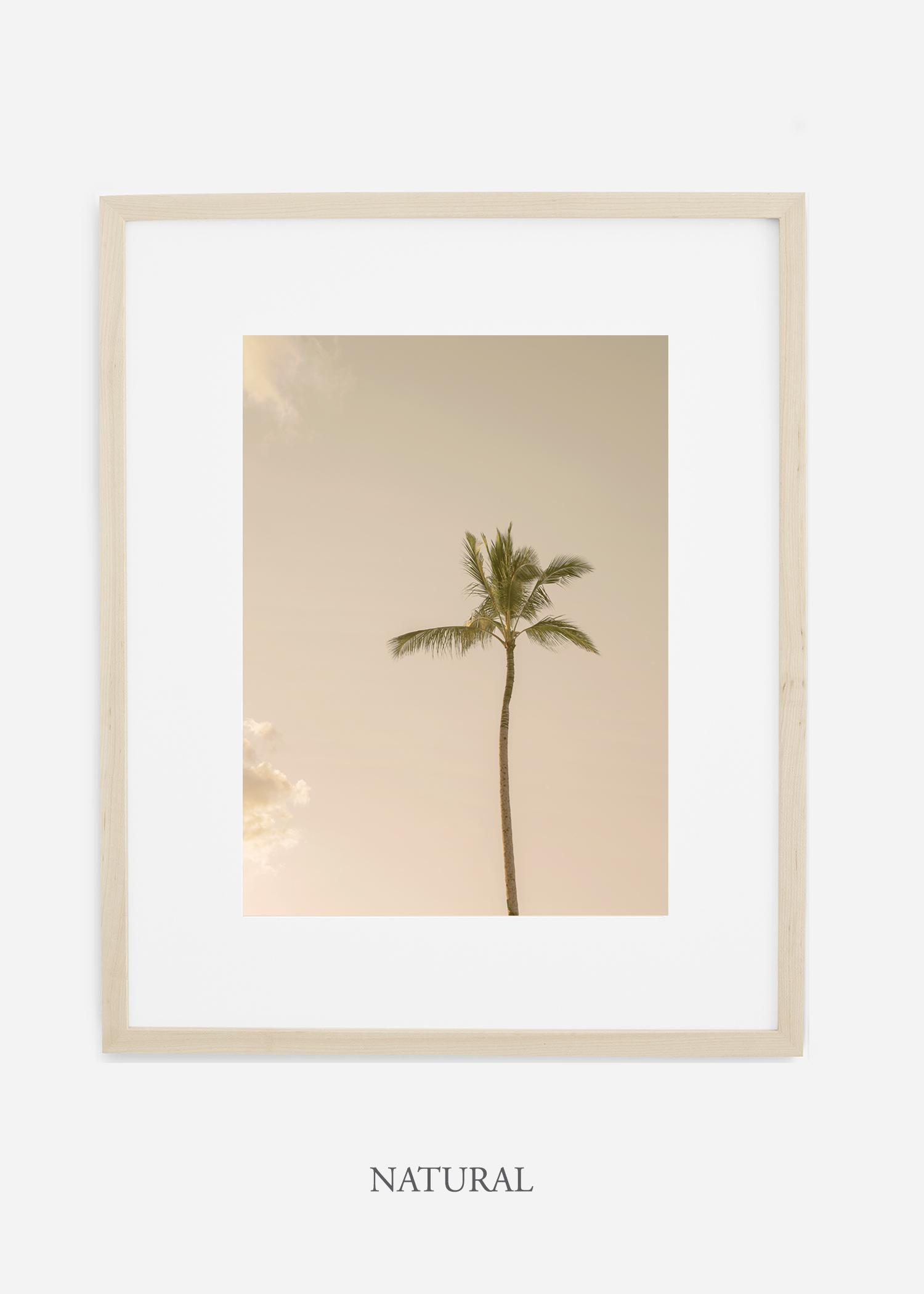 WilderCalifornia_Hawaii_lonepalm_tropicalart_naturalframe.jpg