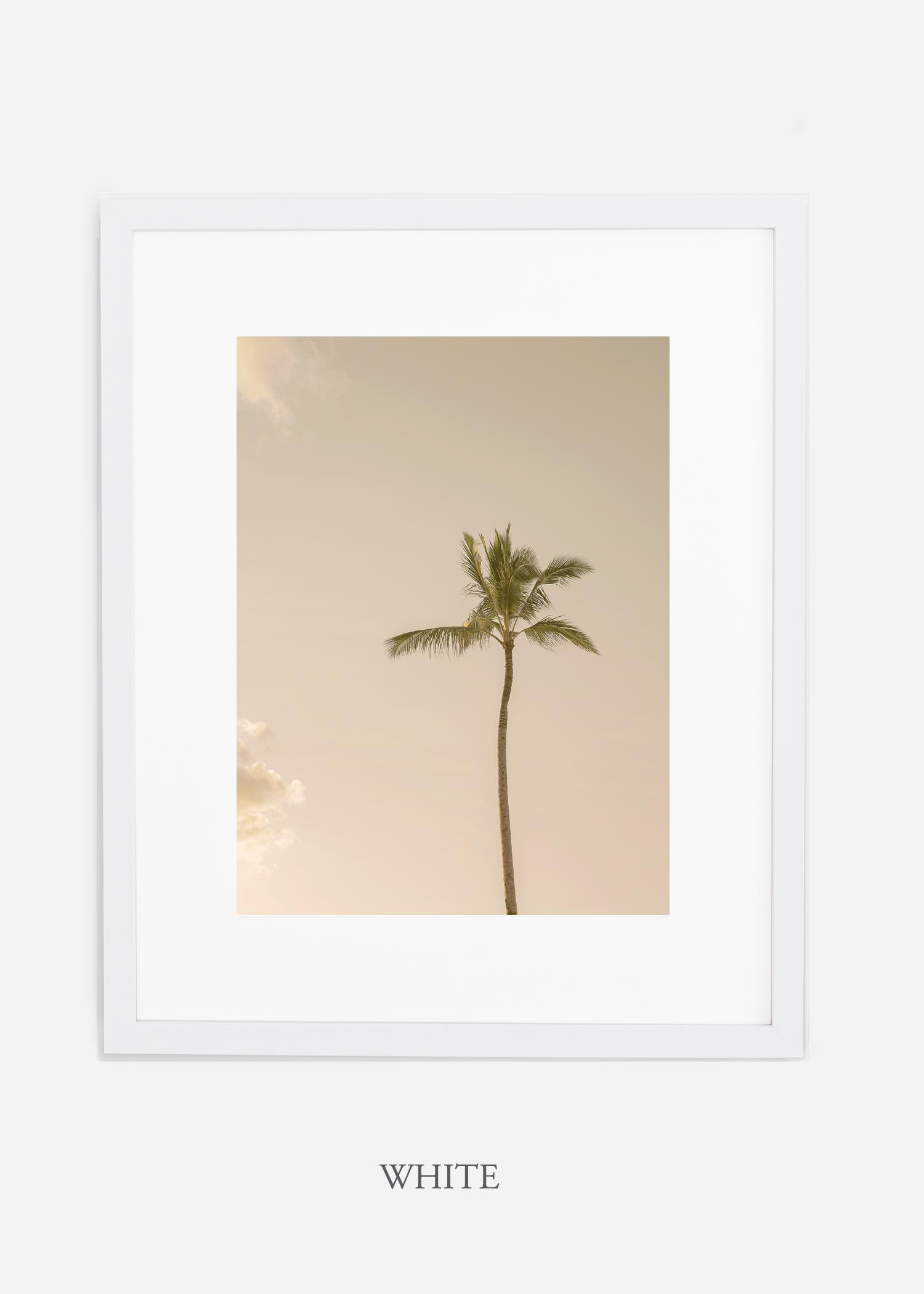WilderCalifornia_Hawaii_lonepalm_tropicalart_whiteframe.jpg