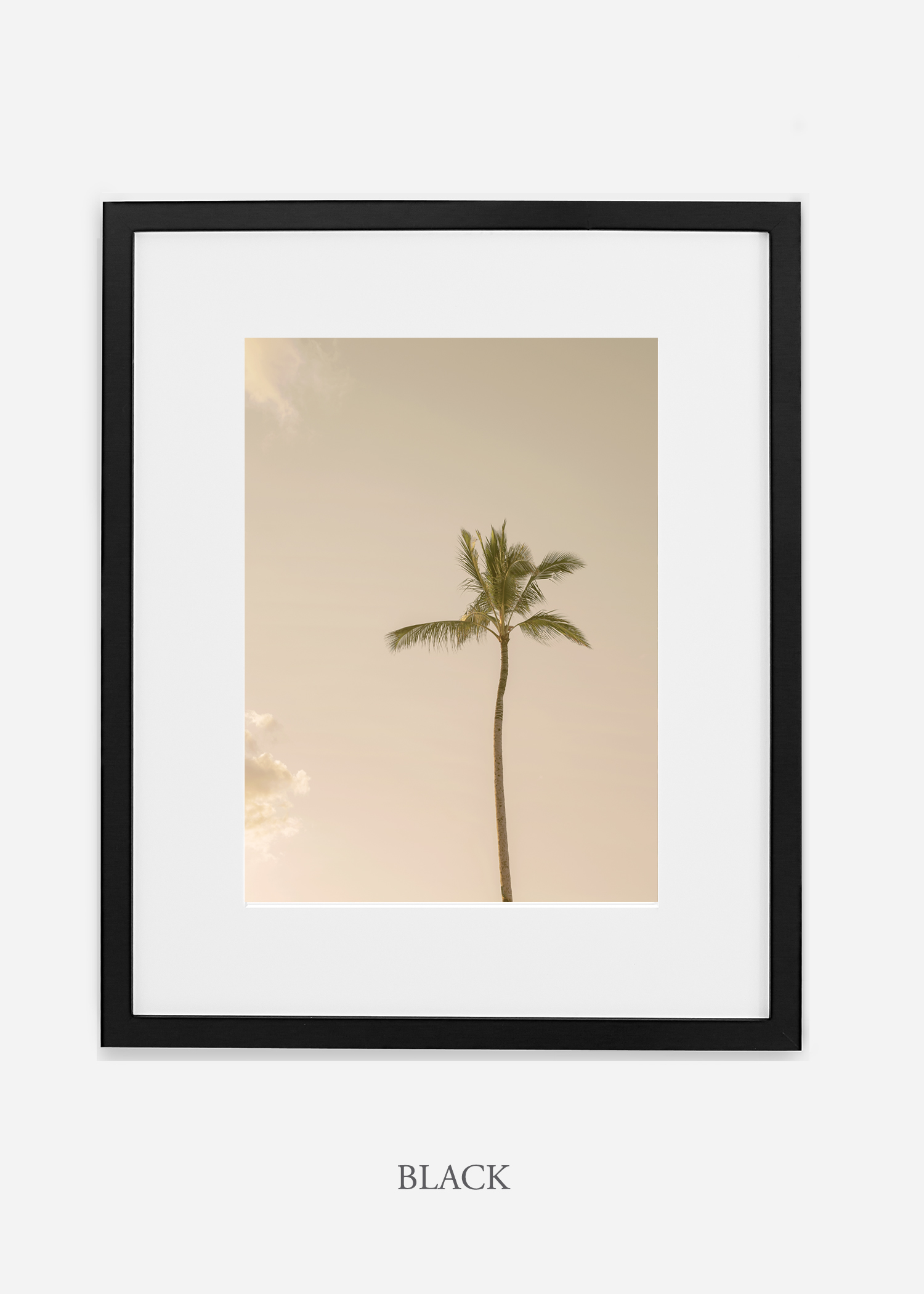 WilderCalifornia_Hawaii_lonepalm_tropicalart_blackframe.jpg