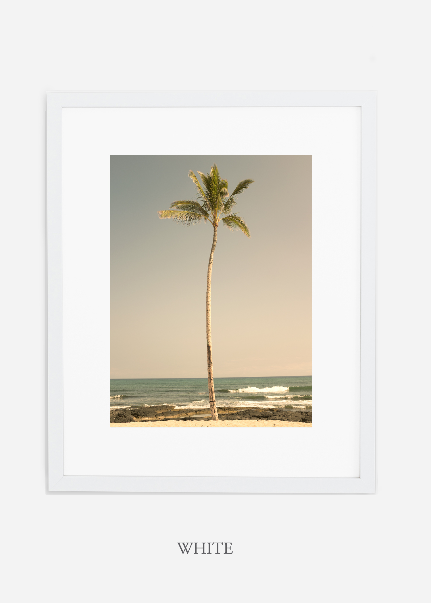 WilderCalifornia_PalmTree_No2_Art_Photography_interiordesign_whiteframe.jpg