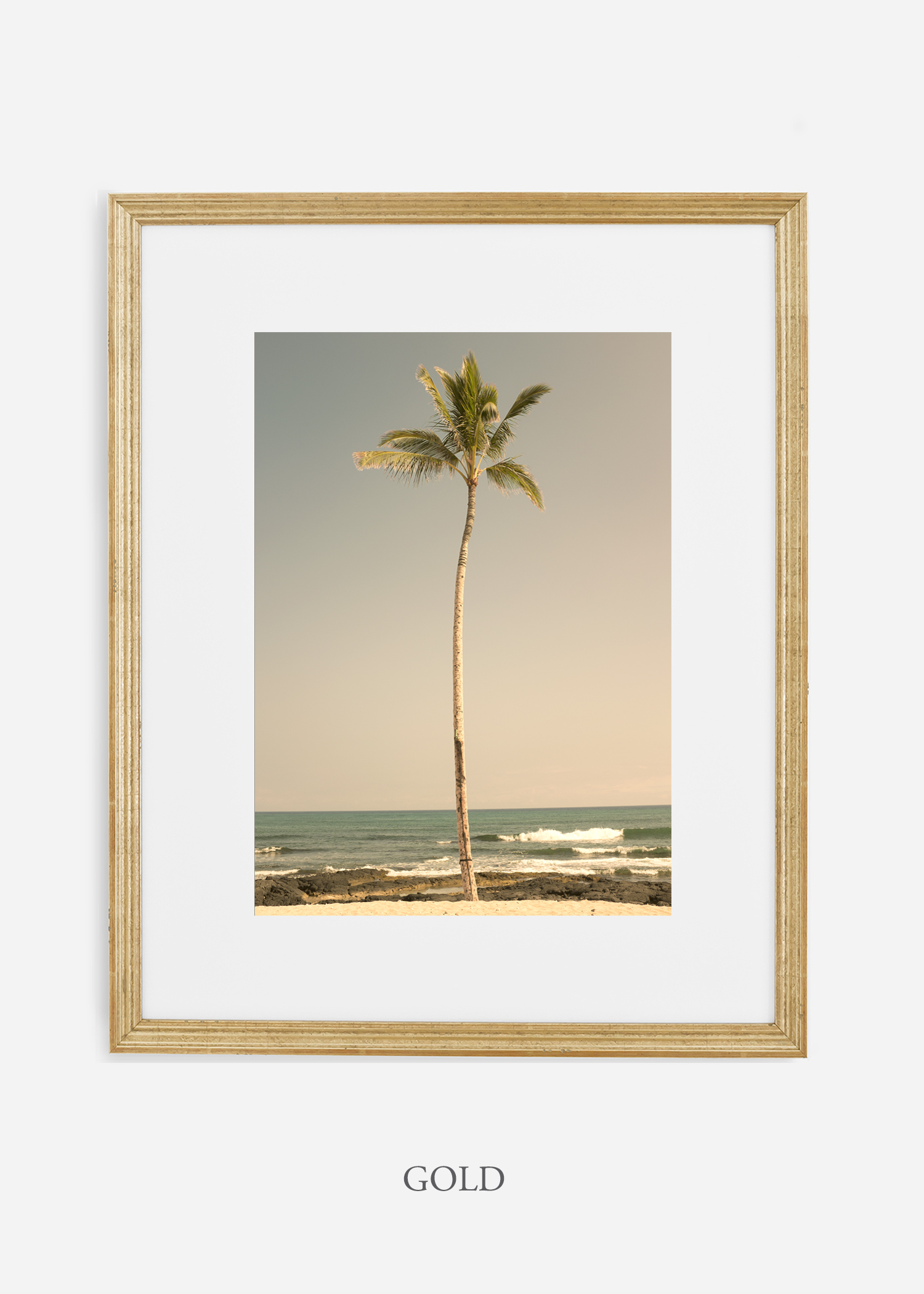 WilderCalifornia_PalmTree_No2_Art_Photography_interiordesign_goldframe.jpg