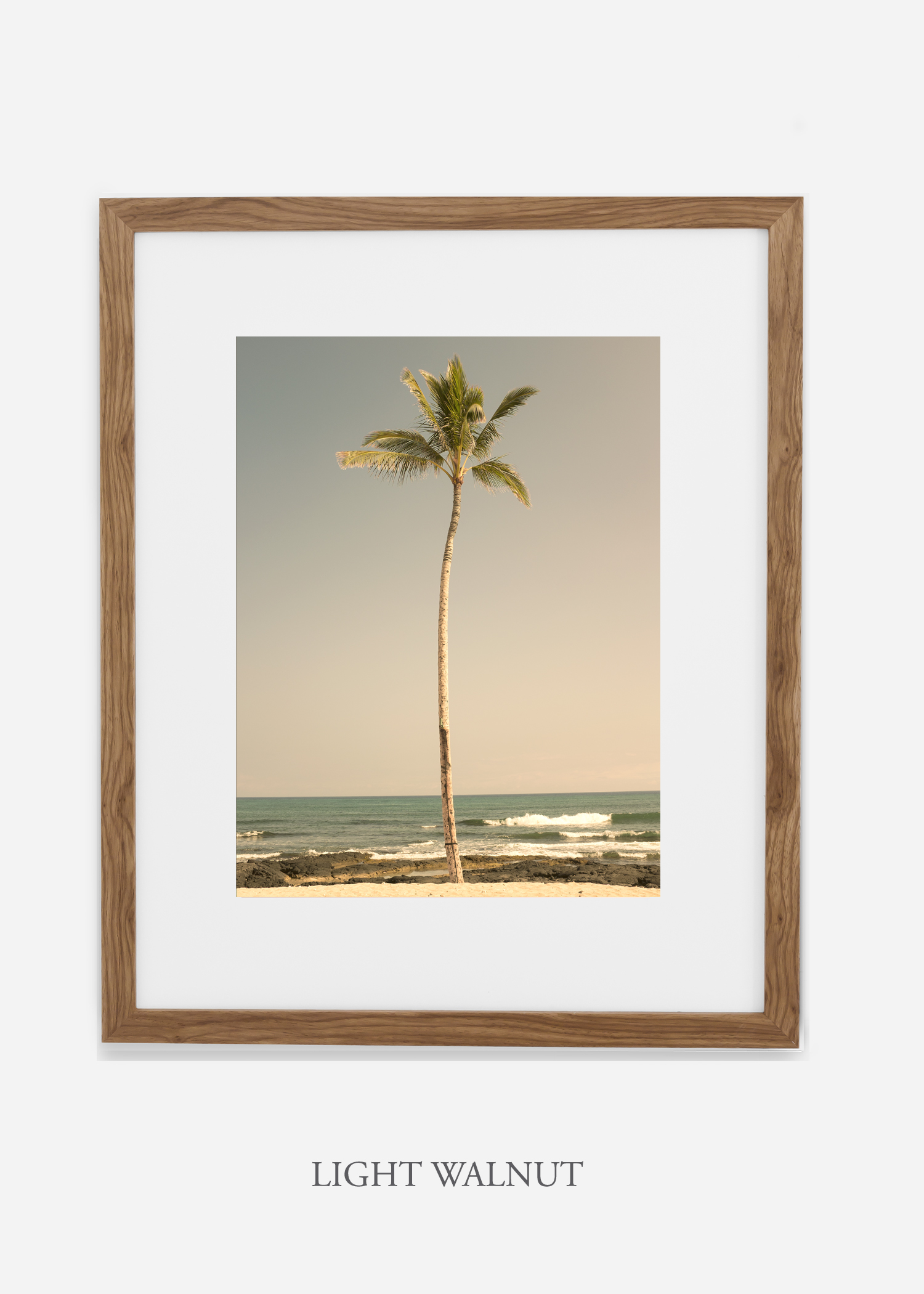 WilderCalifornia_PalmTree_No2_Art_Photography_interiordesign_lightwalnutframe.jpg