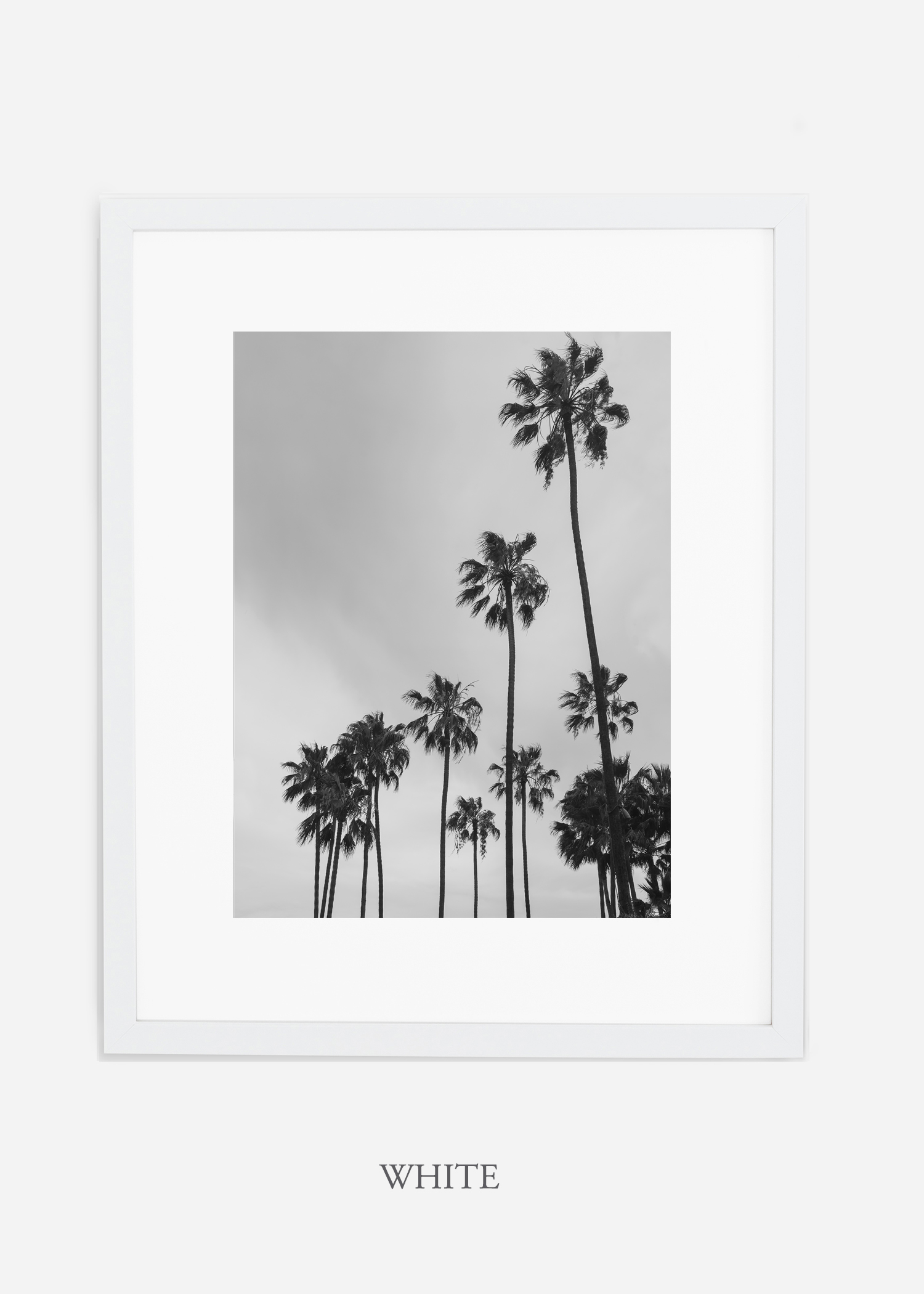 interiordesign_california_losangeles_palmtree_whiteframe.jpg