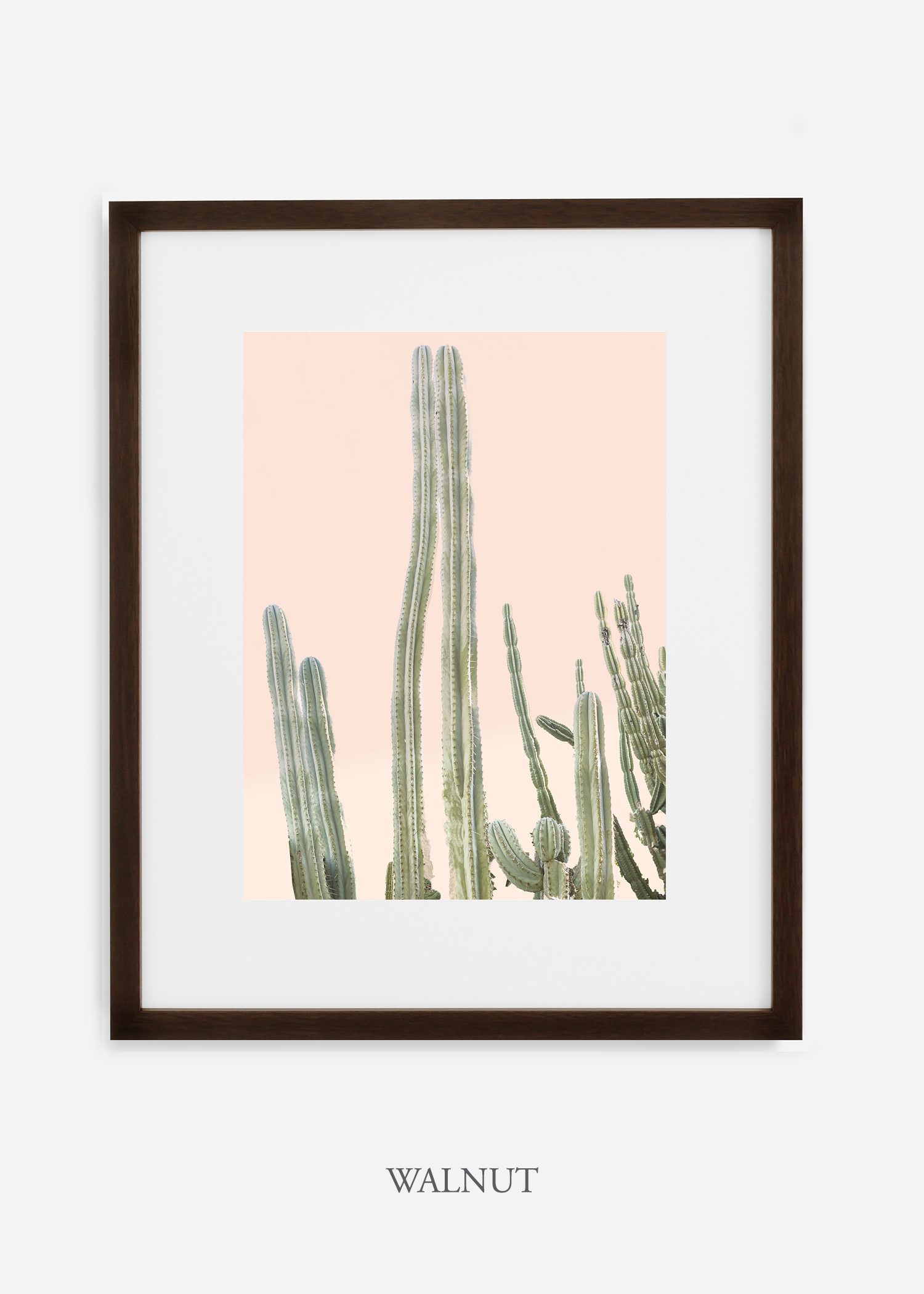 Copy of cactus print