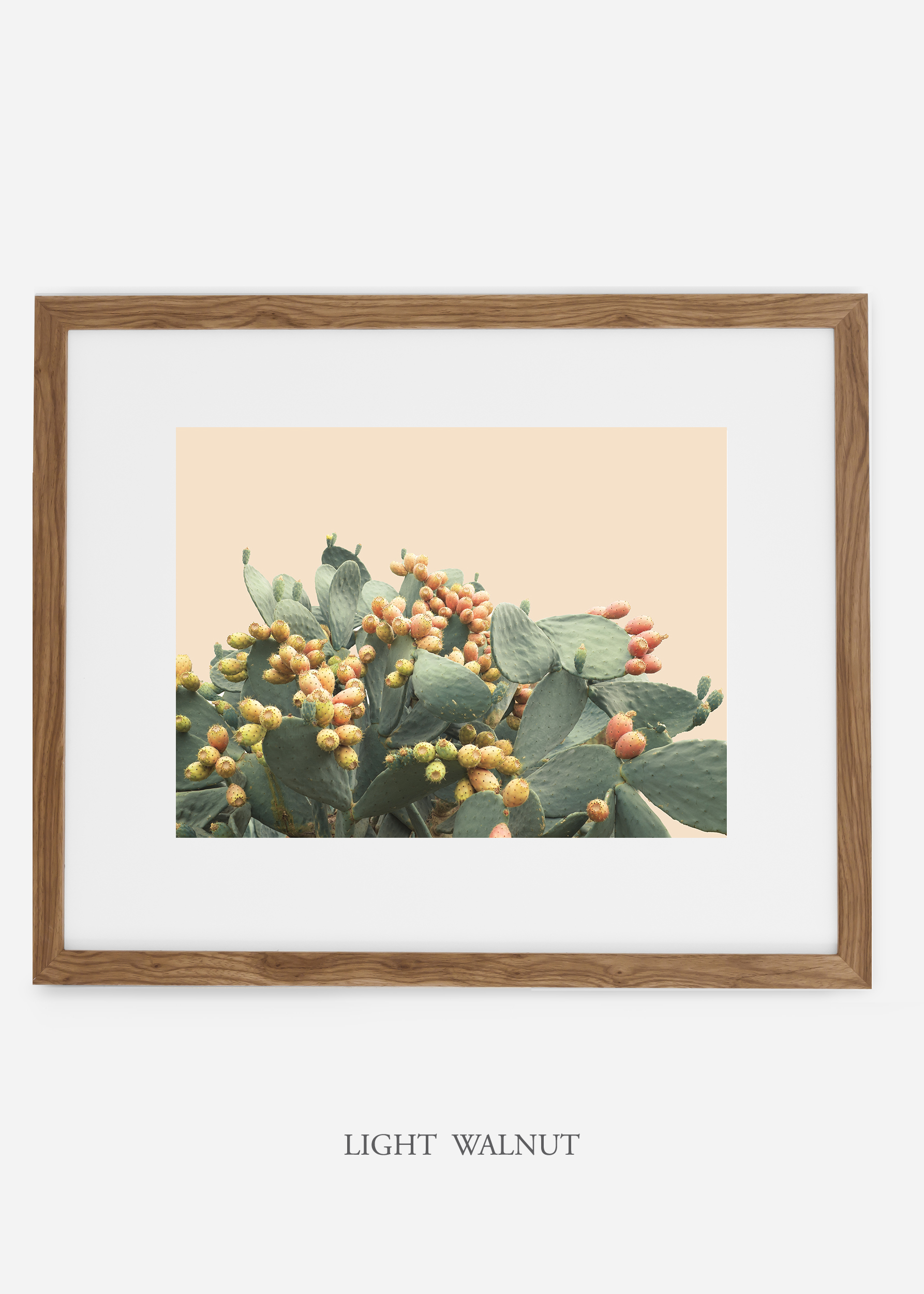 WilderCalifornia_interiordesign_art_lightwalnutframe_PricklyPearNo.1.jpg