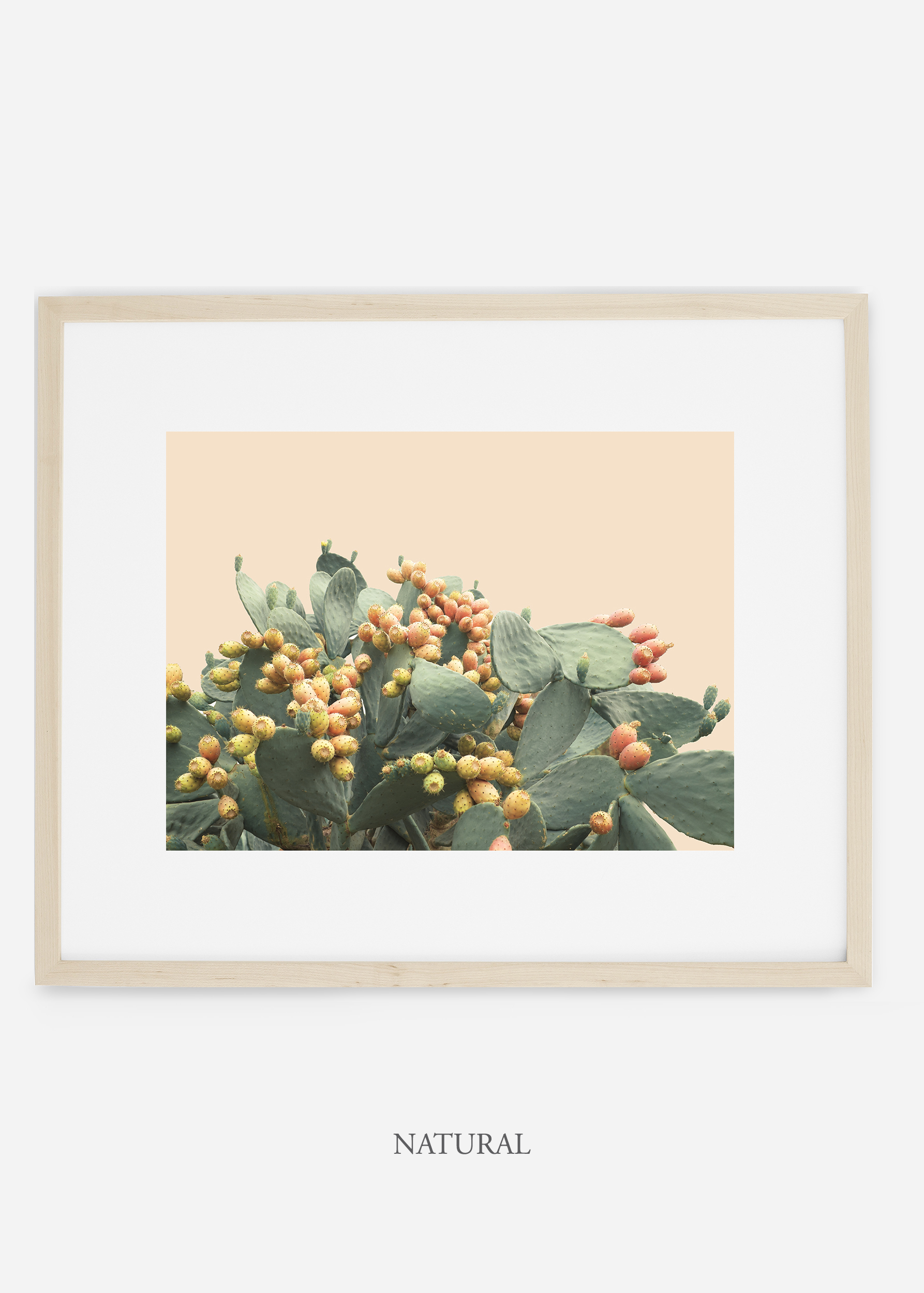 WilderCalifornia_interiordesign_art_naturalframe_PricklyPearNo.1.jpg