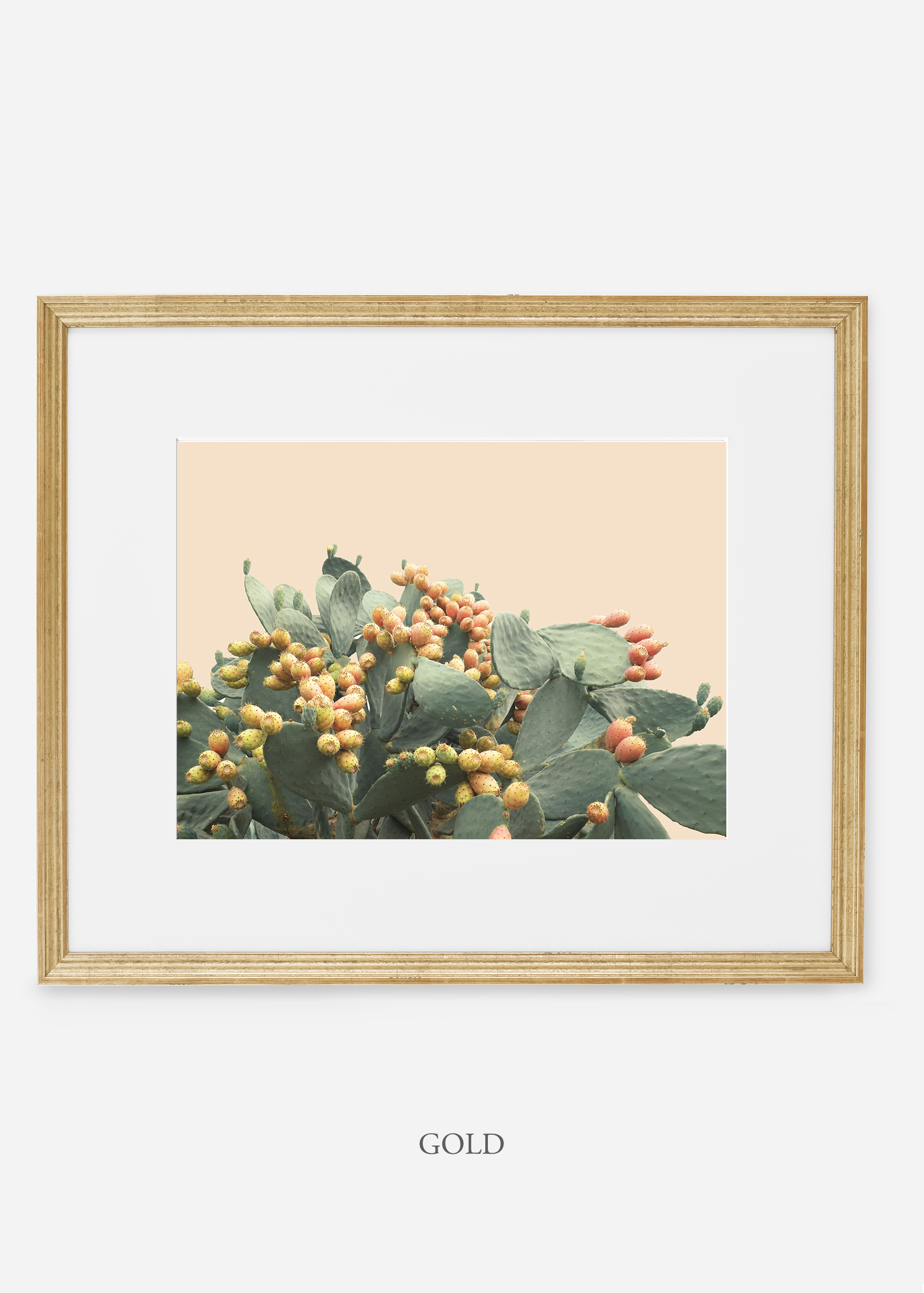 WilderCalifornia_interiordesign_art_goldframe_PricklyPearNo.1.jpg
