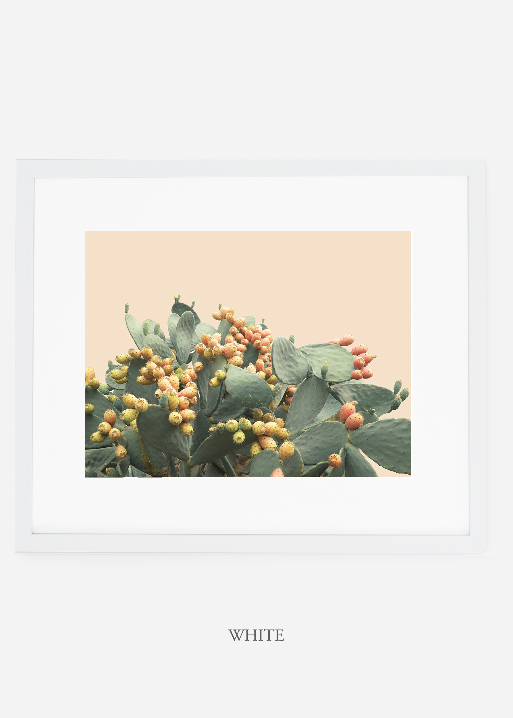 WilderCalifornia_interiordesign_art_whiteframe_PricklyPearNo.1.jpg
