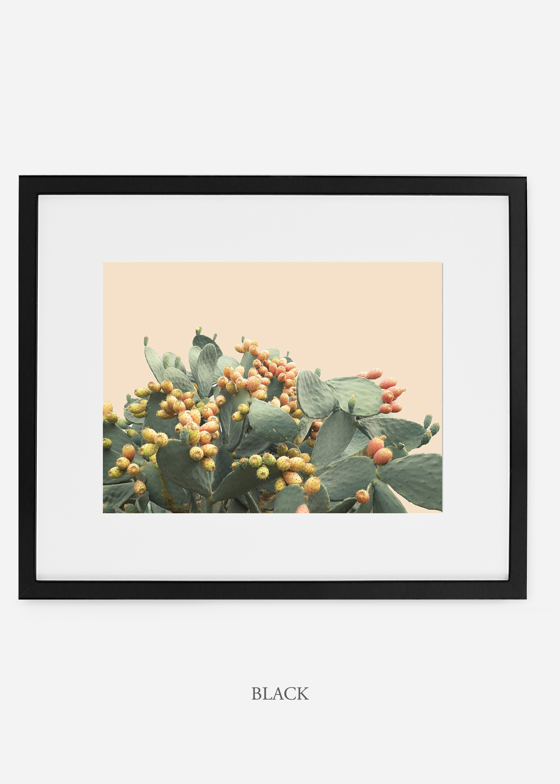WilderCalifornia_interiordesign_art_blackframe_PricklyPearNo.1.jpg