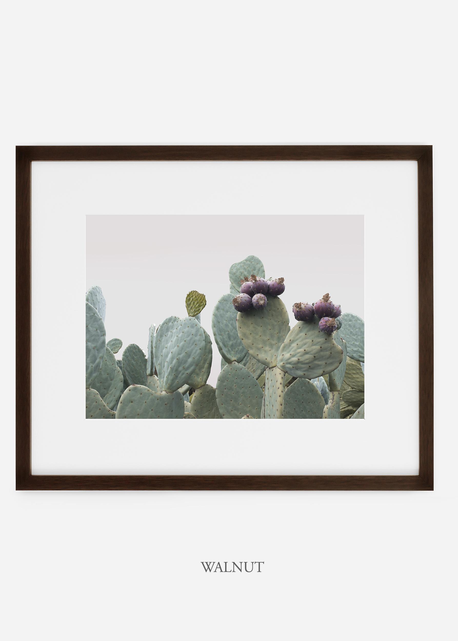 wilder california cactus print