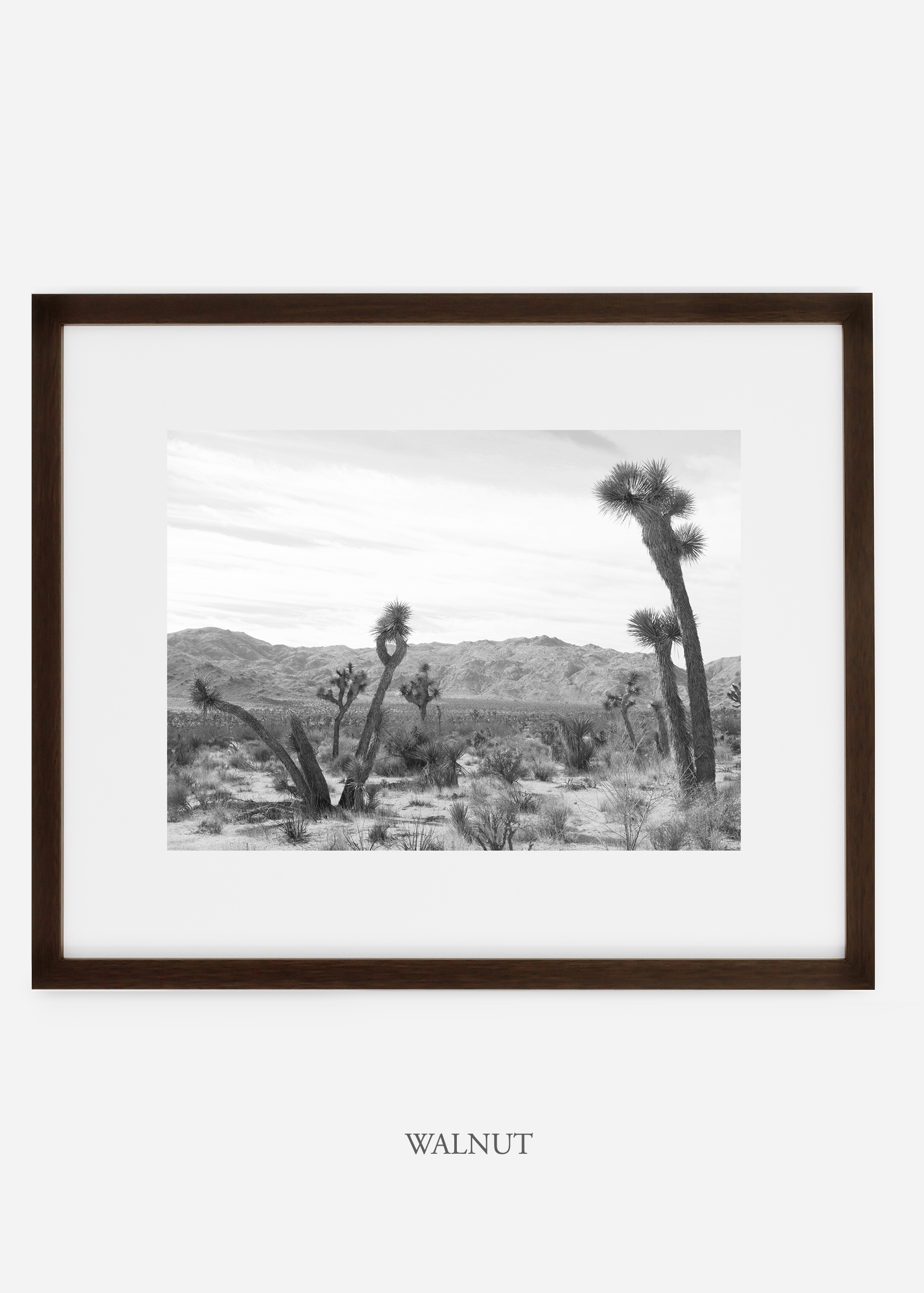 WilderCalifornia_walnutframe_JoshuaTree_No.4_interiordesign_cactusprint_art.jpg