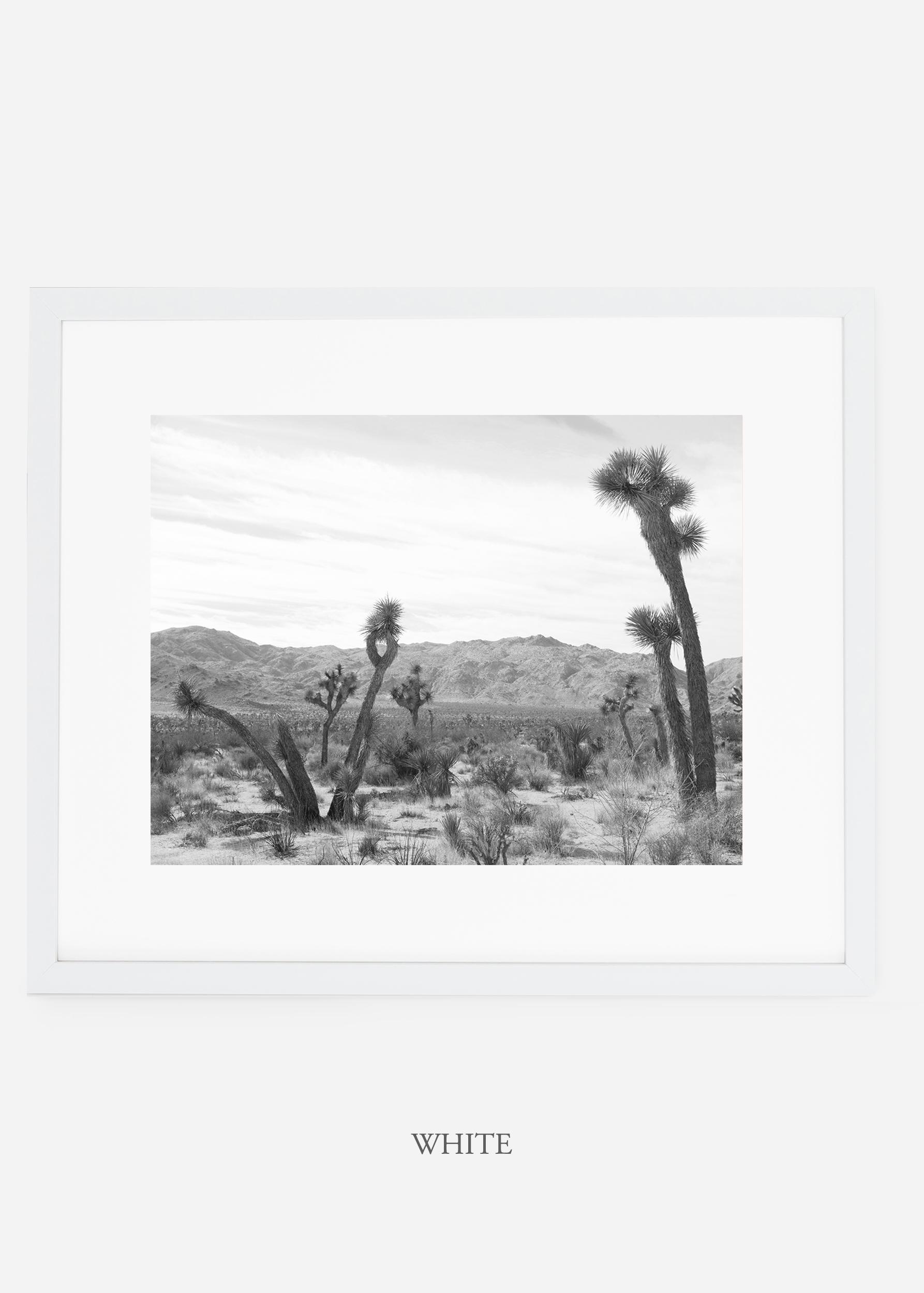 WilderCalifornia_whiteframe_JoshuaTree_No.4_interiordesign_cactusprint_art.jpg