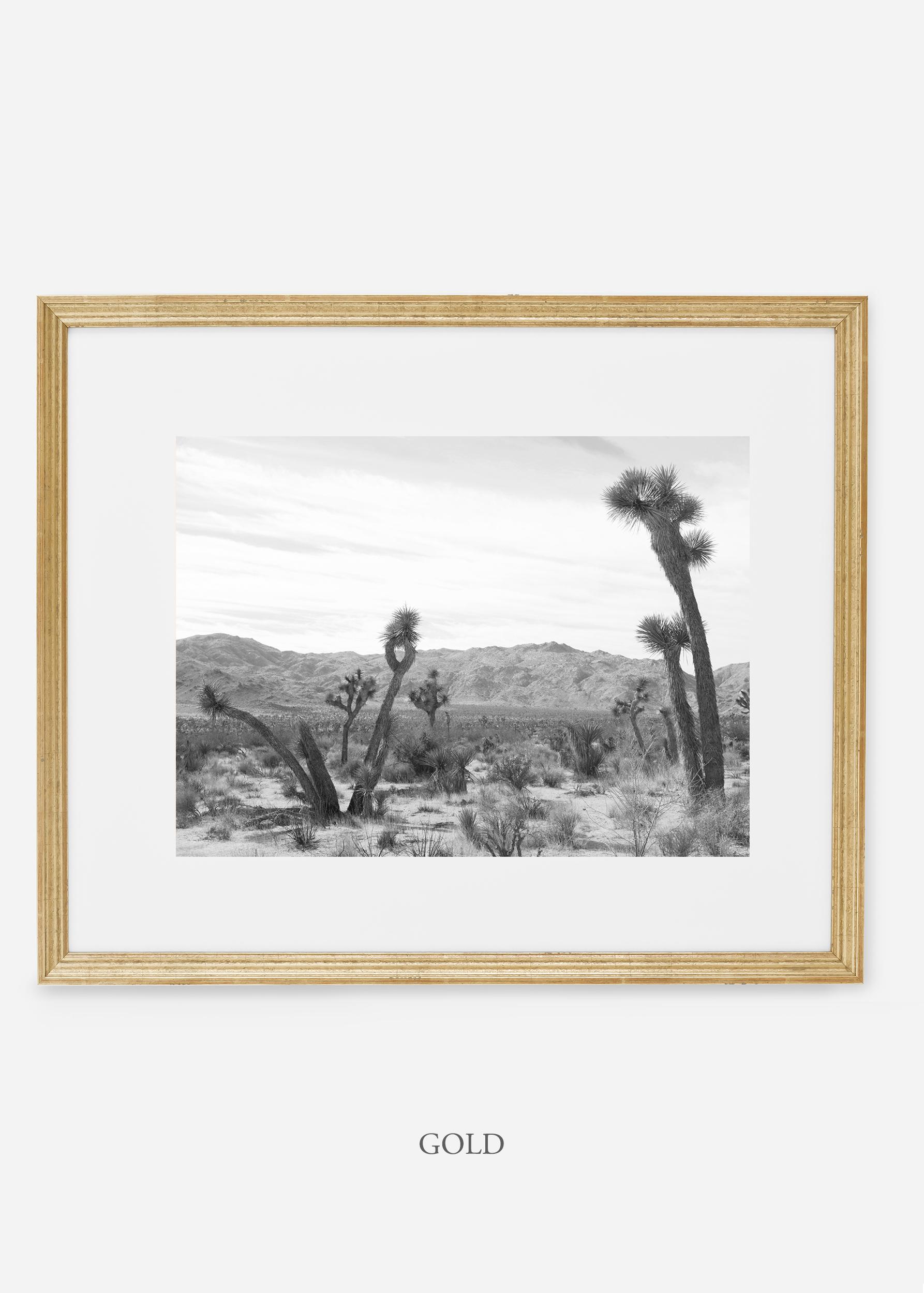 WilderCalifornia_goldframe_JoshuaTree_No.4_interiordesign_cactusprint_art.jpg