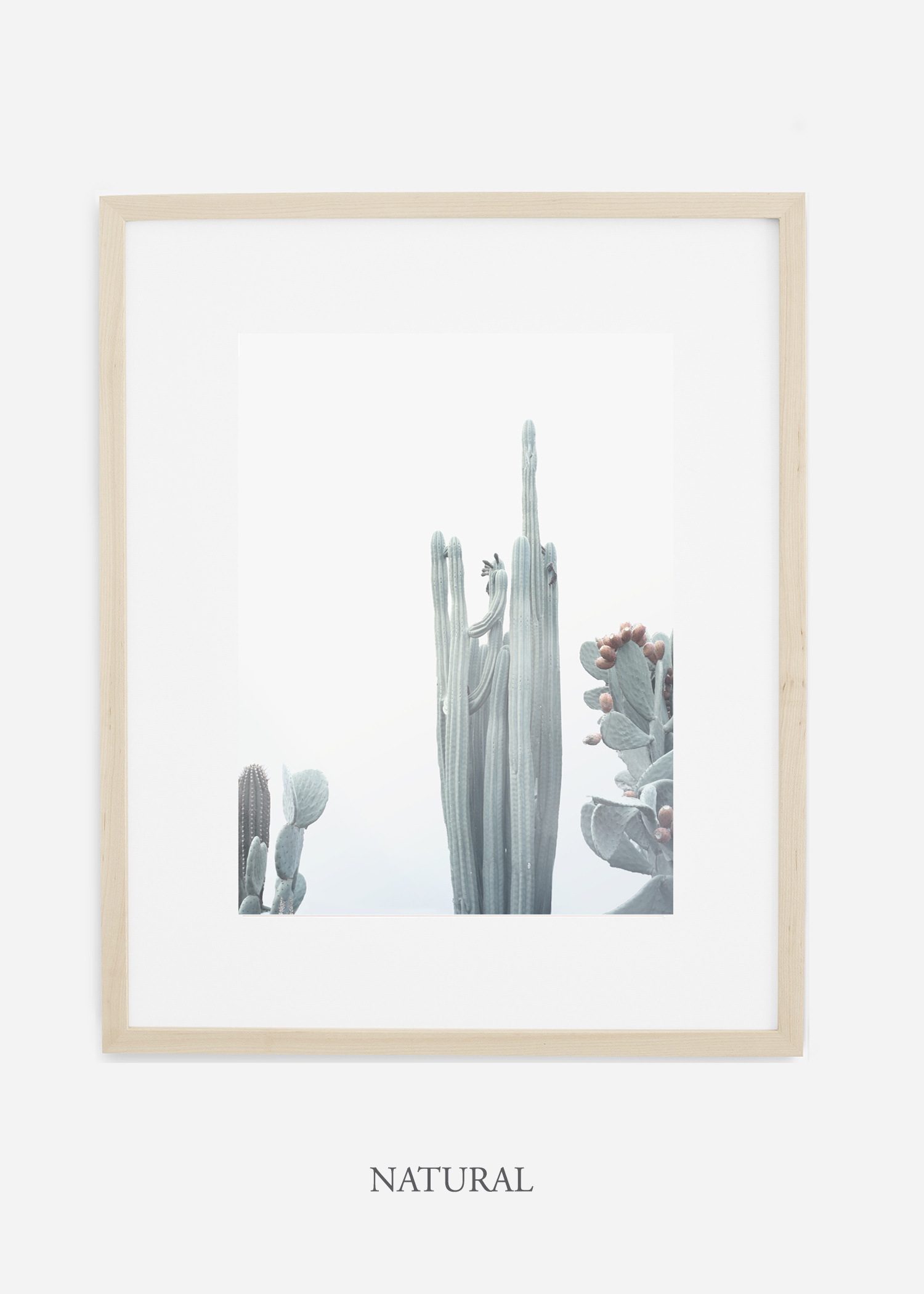 wildercalifornia_winterwhite_No.1_naturalframe_interiordesign_white_neutral_cactus_art_photography_large.jpg