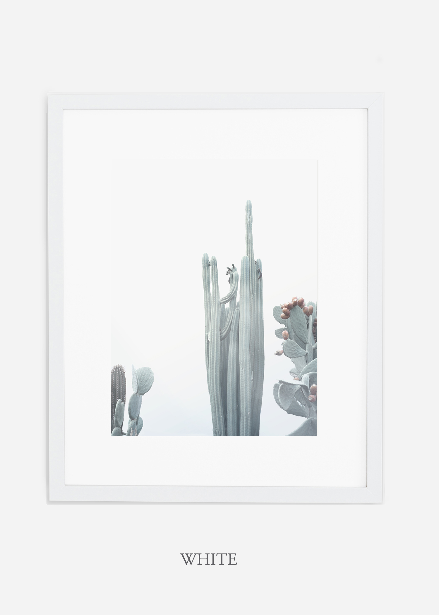 wildercalifornia_winterwhite_No.1_whiteframe_interiordesign_white_neutral_cactus_art_photography_large.jpg