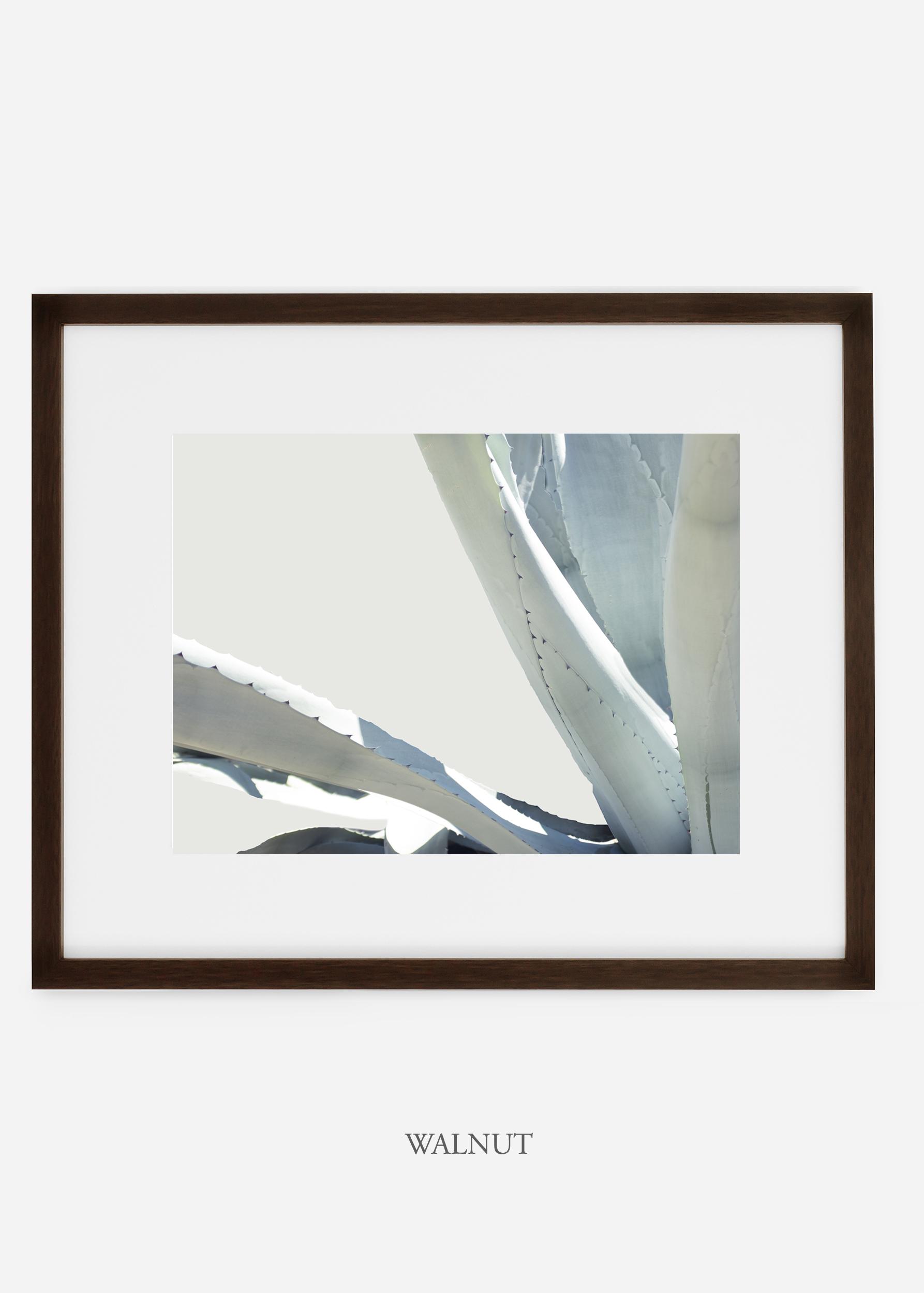 WilderCalifornia_walnutframe_WinterWhite_No6_Art_Photography_interiordesign_agave.jpg