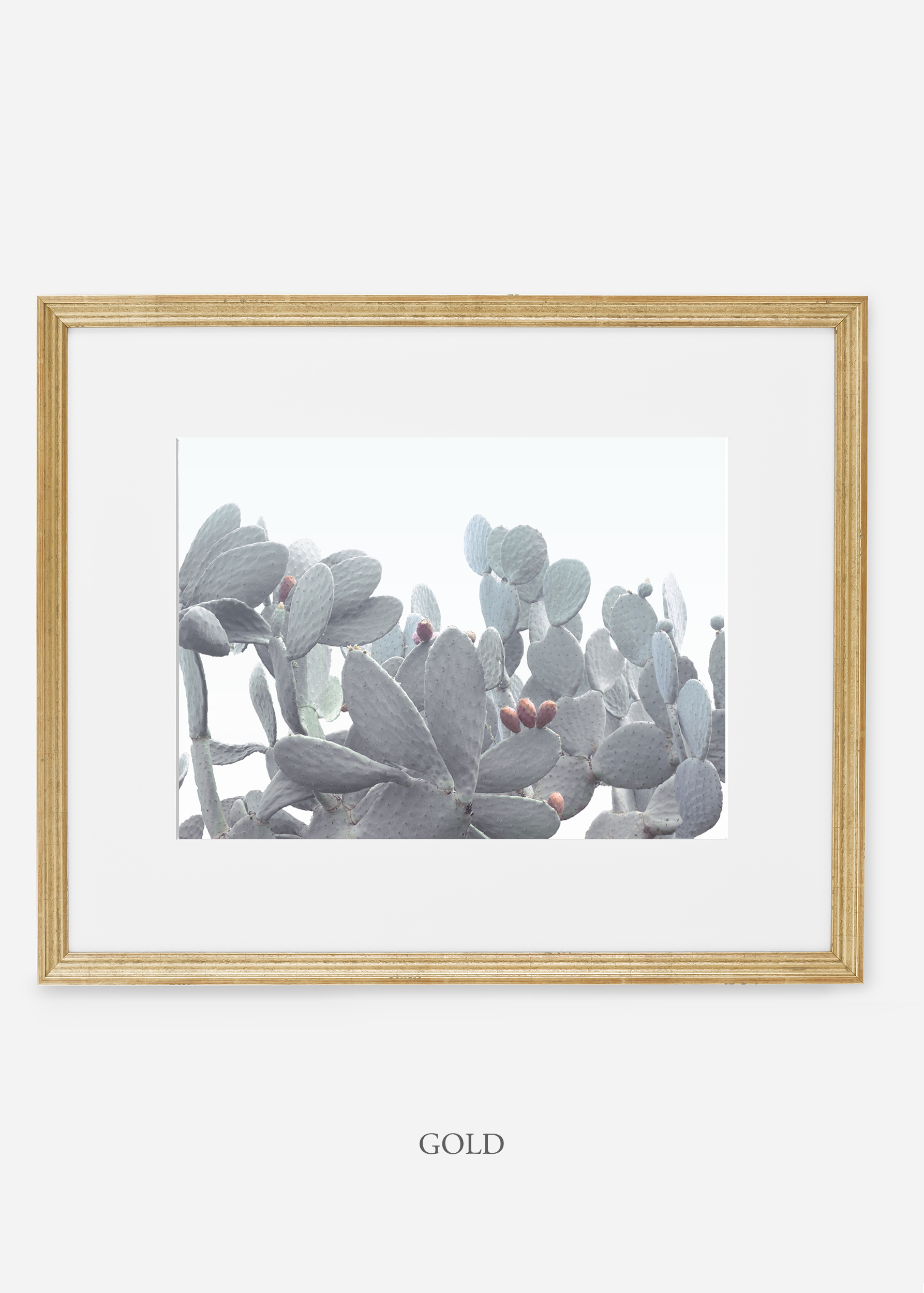 WilderCalifornia_goldframe_WinterWhite_No4_Art_Photography_interiordesign_agave.jpg