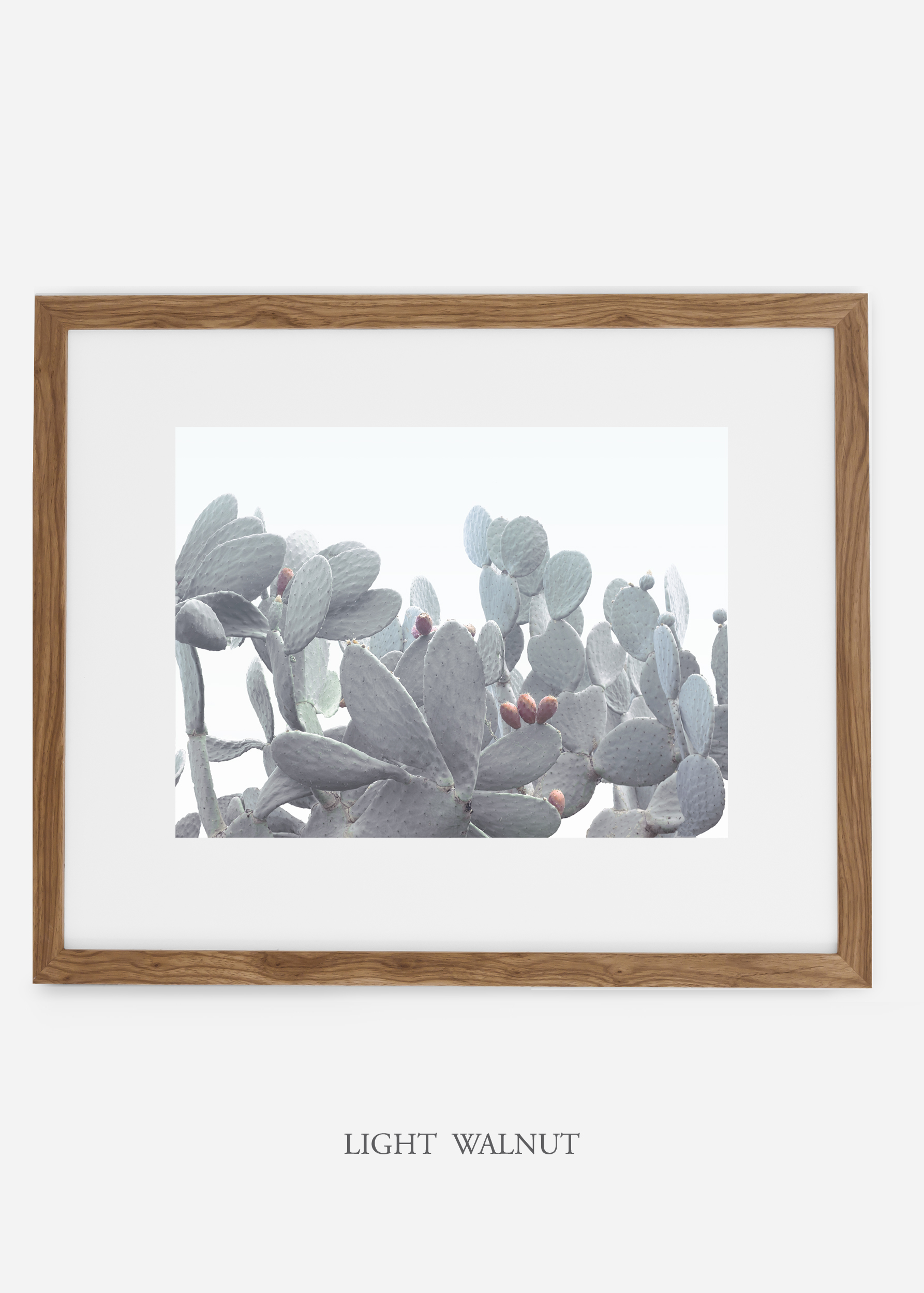 WilderCalifornia_lightwalnutframe_WinterWhite_No4_Art_Photography_interiordesign_agave.jpg